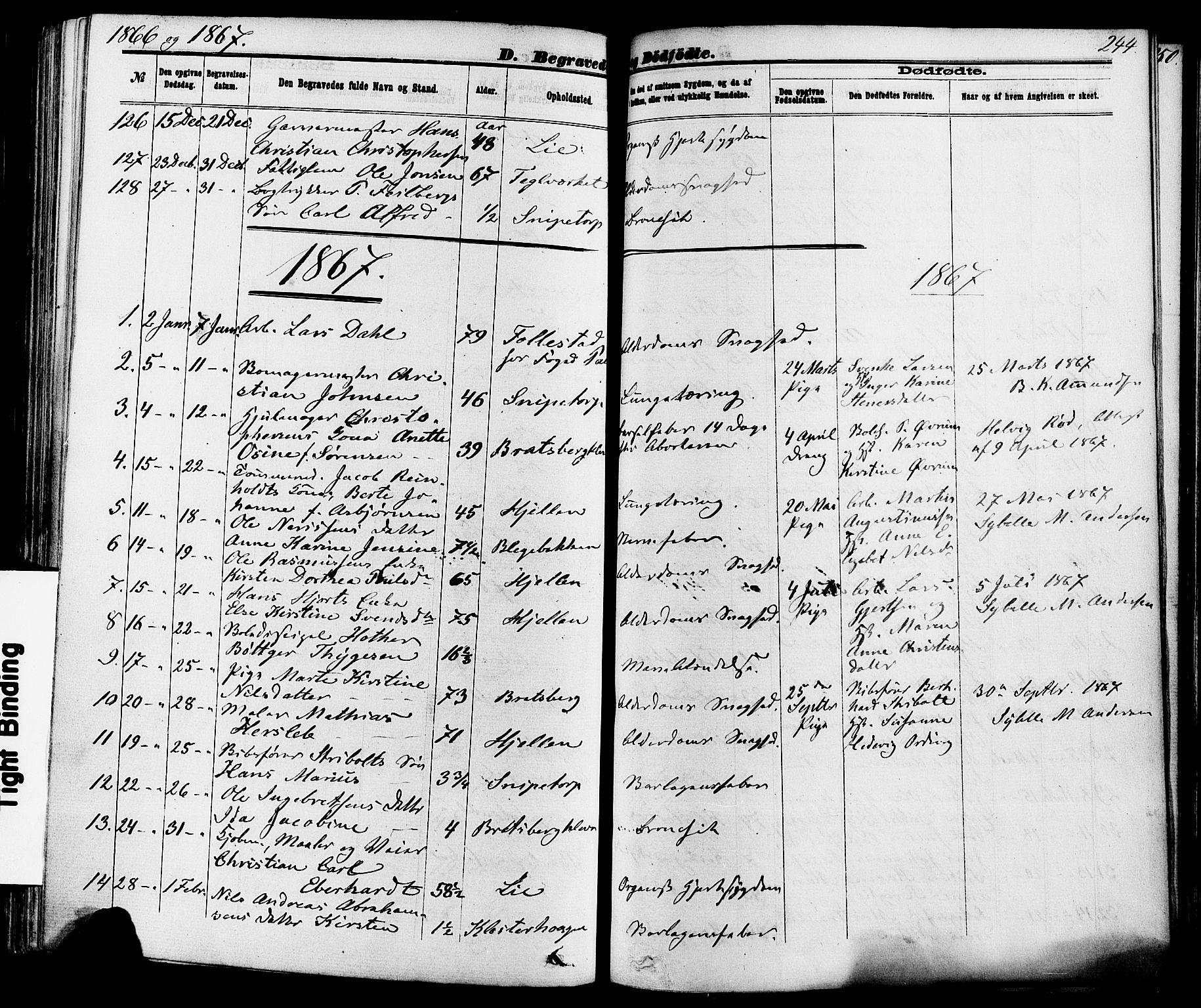 SAKO, Skien kirkebøker, F/Fa/L0008: Ministerialbok nr. 8, 1866-1877, s. 244