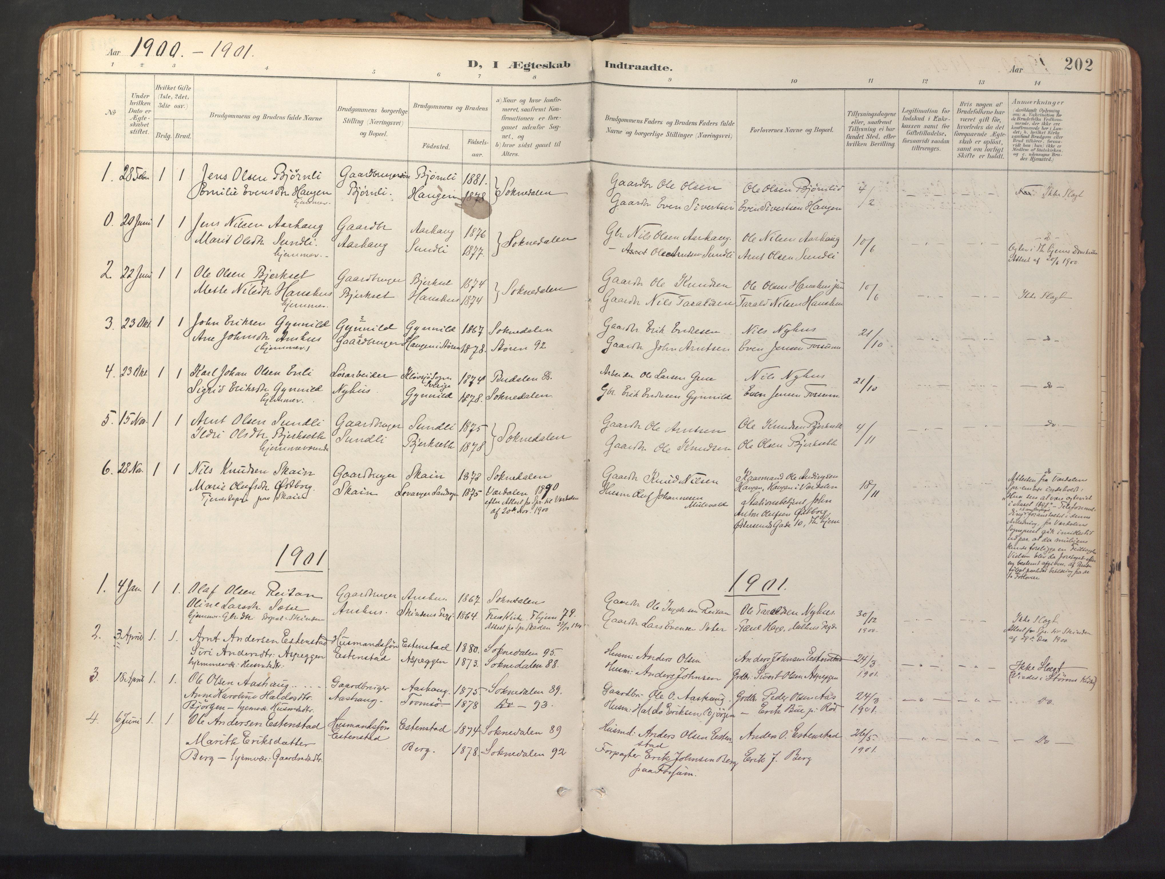 SAT, Ministerialprotokoller, klokkerbøker og fødselsregistre - Sør-Trøndelag, 689/L1041: Ministerialbok nr. 689A06, 1891-1923, s. 202