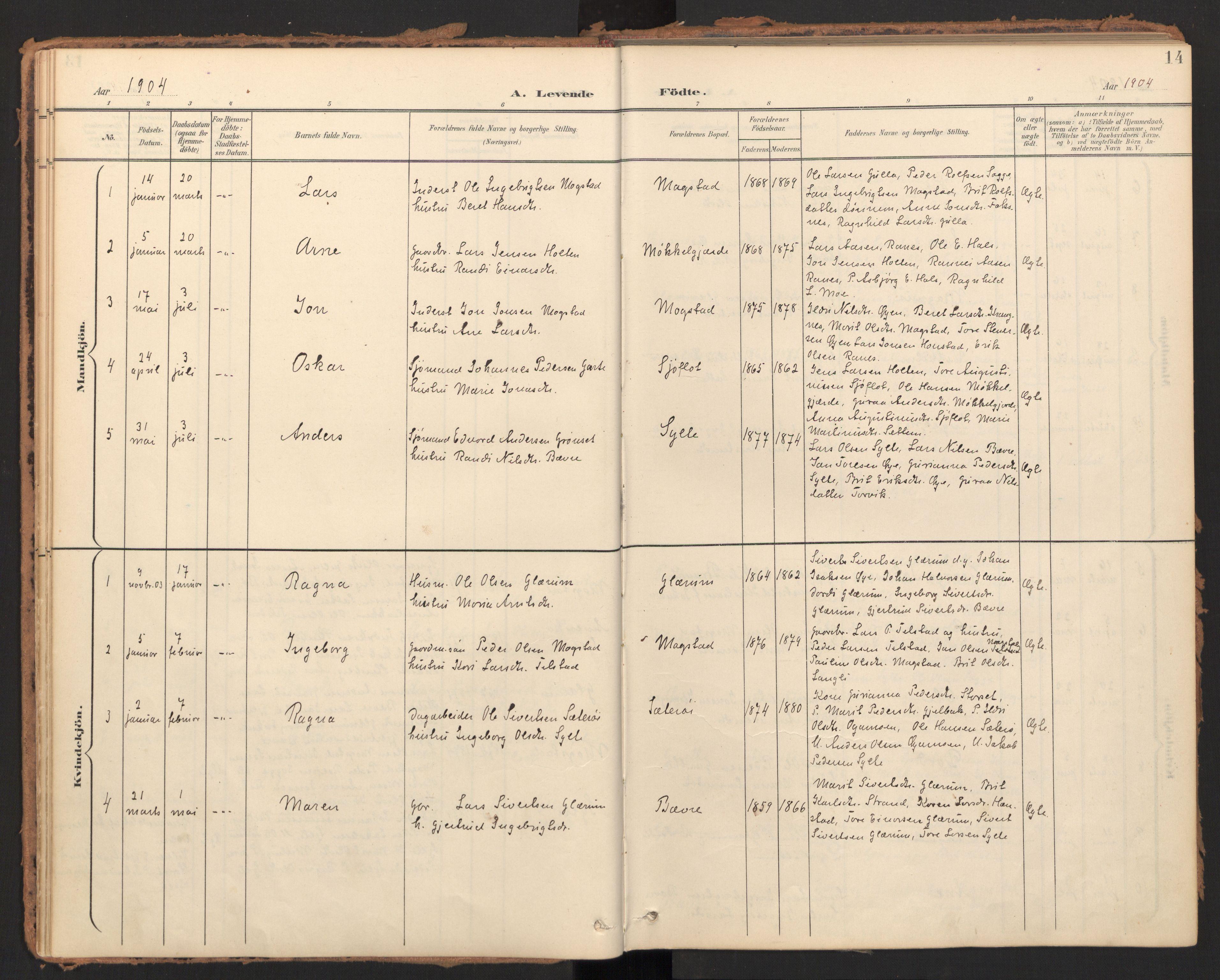 SAT, Ministerialprotokoller, klokkerbøker og fødselsregistre - Møre og Romsdal, 595/L1048: Ministerialbok nr. 595A10, 1900-1917, s. 14