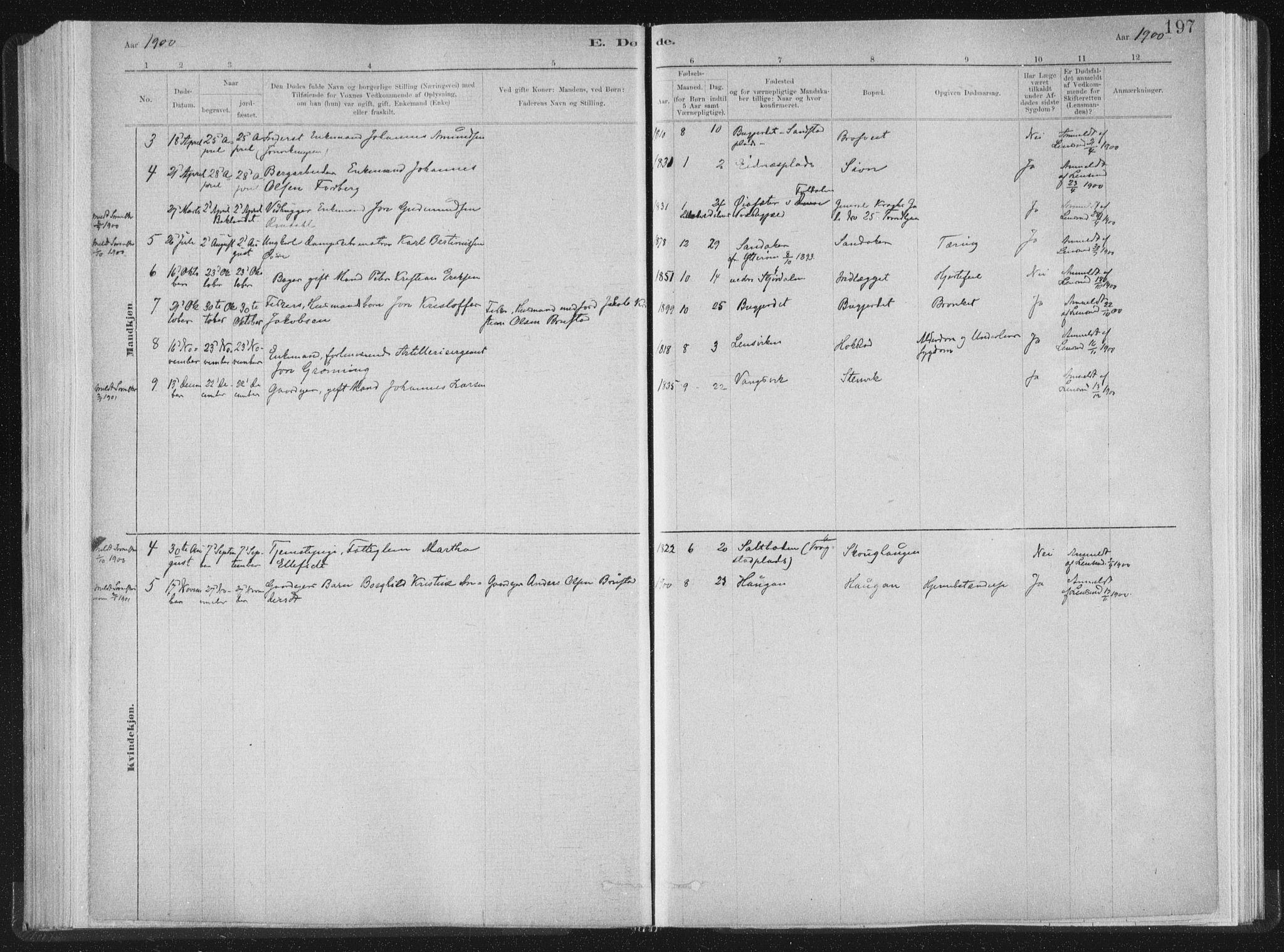 SAT, Ministerialprotokoller, klokkerbøker og fødselsregistre - Nord-Trøndelag, 722/L0220: Ministerialbok nr. 722A07, 1881-1908, s. 197