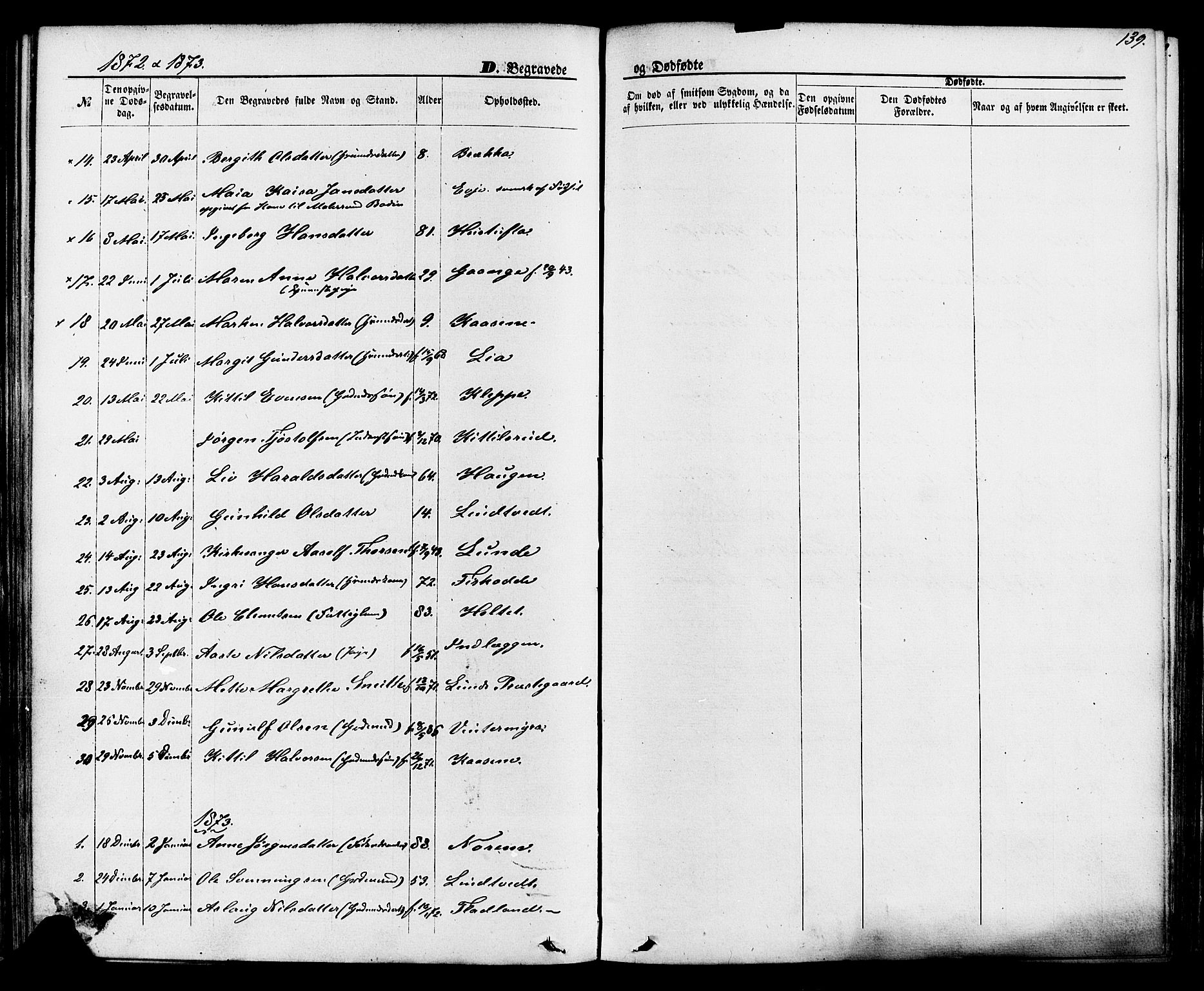 SAKO, Lunde kirkebøker, F/Fa/L0001: Ministerialbok nr. I 1, 1866-1883, s. 139