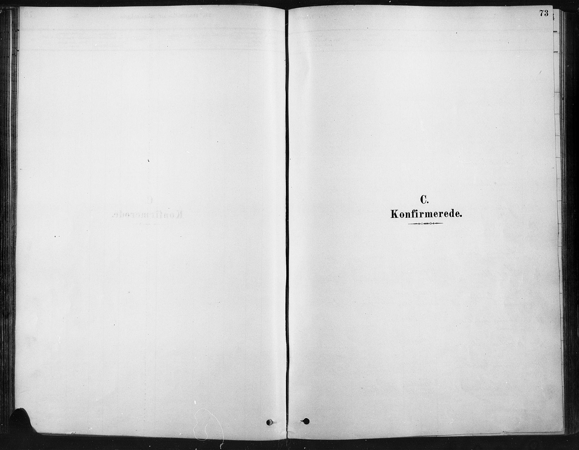 SAH, Ringebu prestekontor, Ministerialbok nr. 9, 1878-1898, s. 73