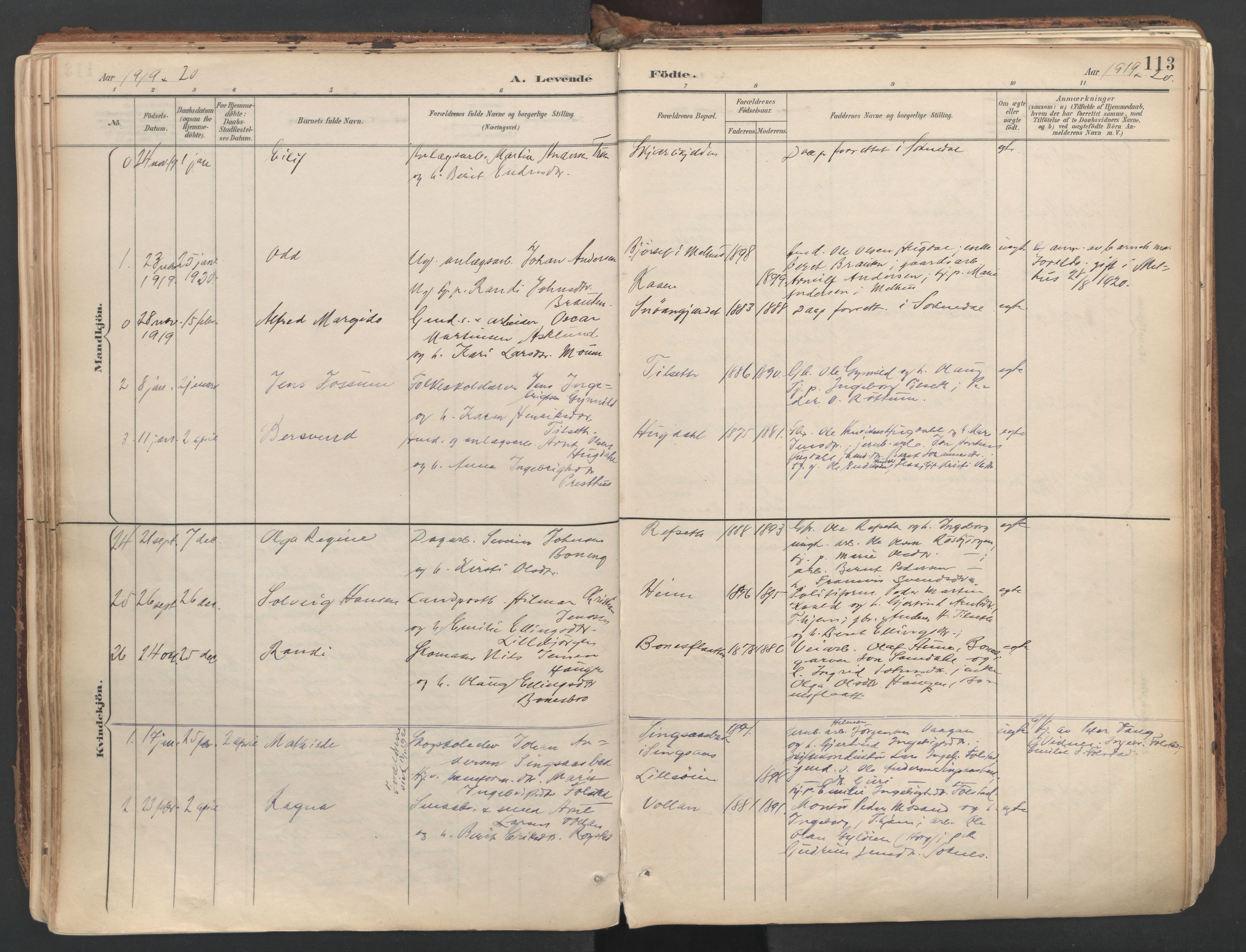 SAT, Ministerialprotokoller, klokkerbøker og fødselsregistre - Sør-Trøndelag, 687/L1004: Ministerialbok nr. 687A10, 1891-1923, s. 113