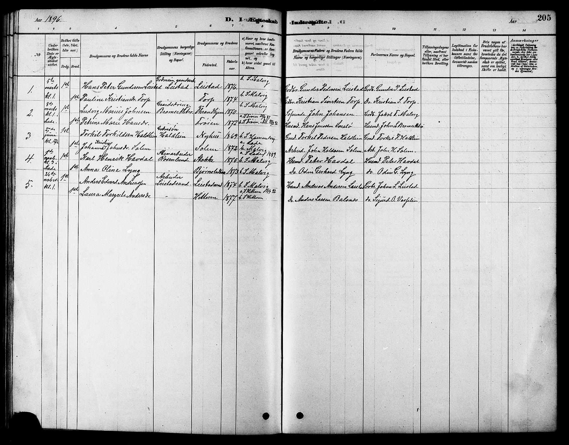 SAT, Ministerialprotokoller, klokkerbøker og fødselsregistre - Sør-Trøndelag, 616/L0423: Klokkerbok nr. 616C06, 1878-1903, s. 205