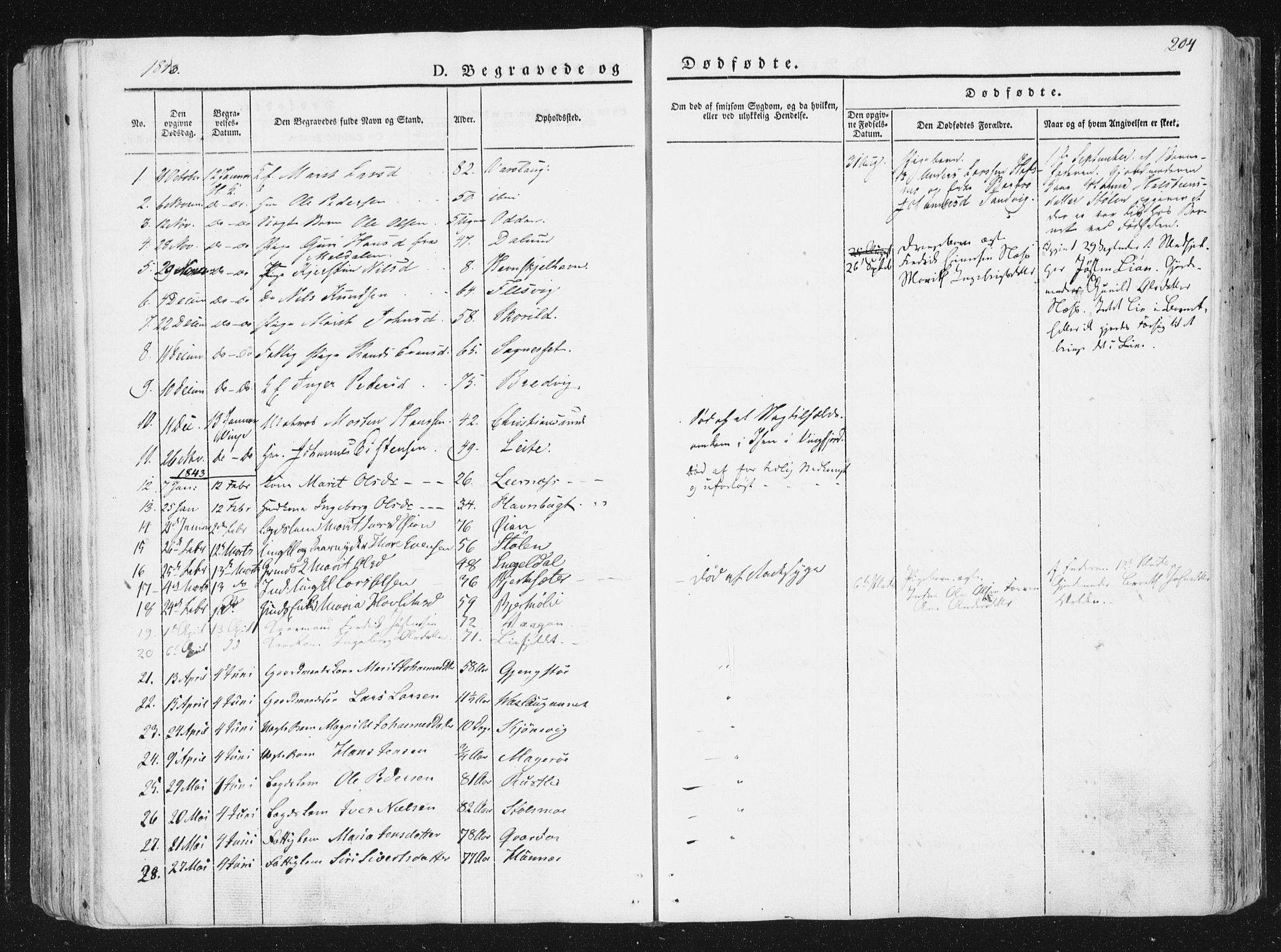 SAT, Ministerialprotokoller, klokkerbøker og fødselsregistre - Sør-Trøndelag, 630/L0493: Ministerialbok nr. 630A06, 1841-1851, s. 204