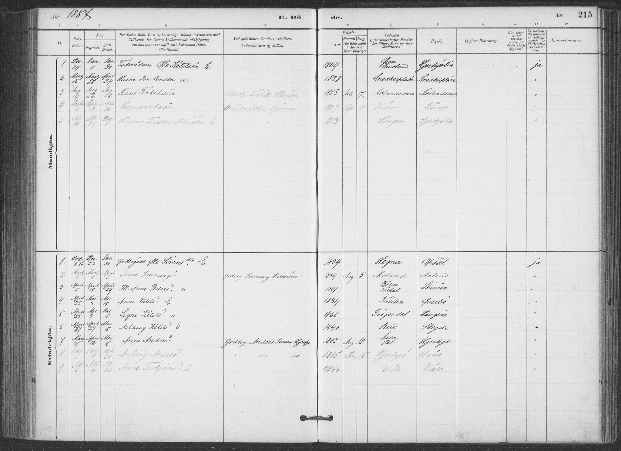 SAKO, Hjartdal kirkebøker, F/Fa/L0010: Ministerialbok nr. I 10, 1880-1929, s. 215