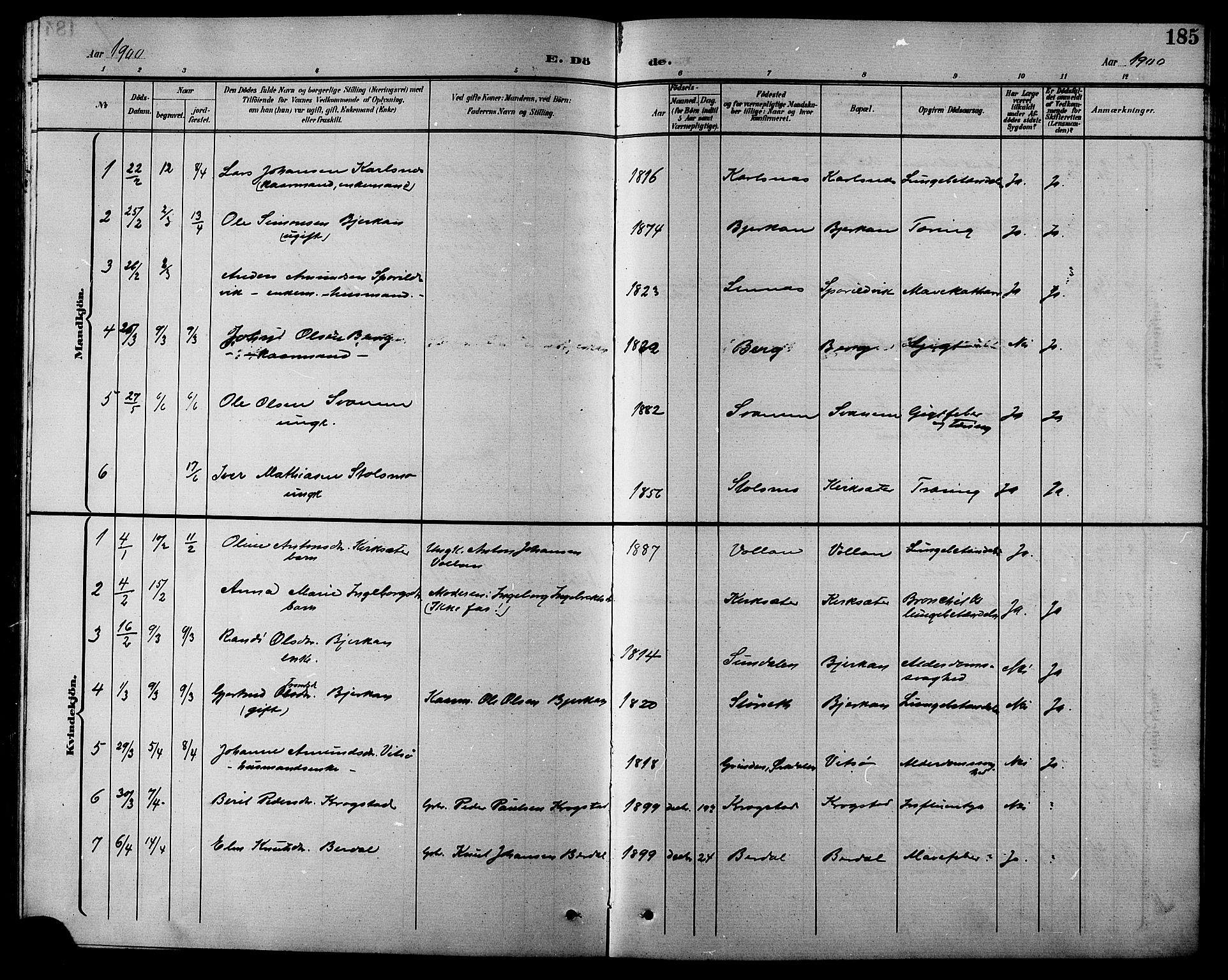 SAT, Ministerialprotokoller, klokkerbøker og fødselsregistre - Sør-Trøndelag, 630/L0505: Klokkerbok nr. 630C03, 1899-1914, s. 185