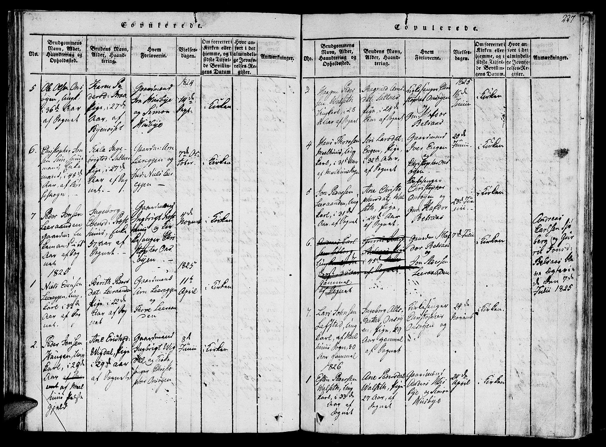 SAT, Ministerialprotokoller, klokkerbøker og fødselsregistre - Sør-Trøndelag, 612/L0373: Ministerialbok nr. 612A06 /2, 1816-1828, s. 227