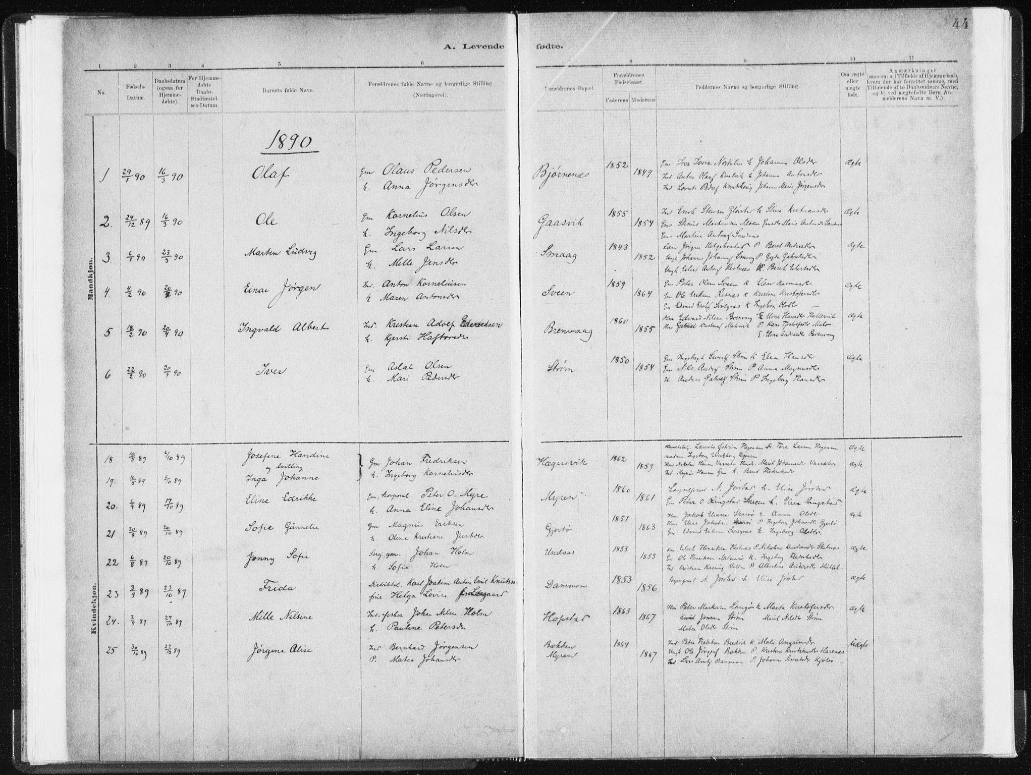 SAT, Ministerialprotokoller, klokkerbøker og fødselsregistre - Sør-Trøndelag, 634/L0533: Ministerialbok nr. 634A09, 1882-1901, s. 44