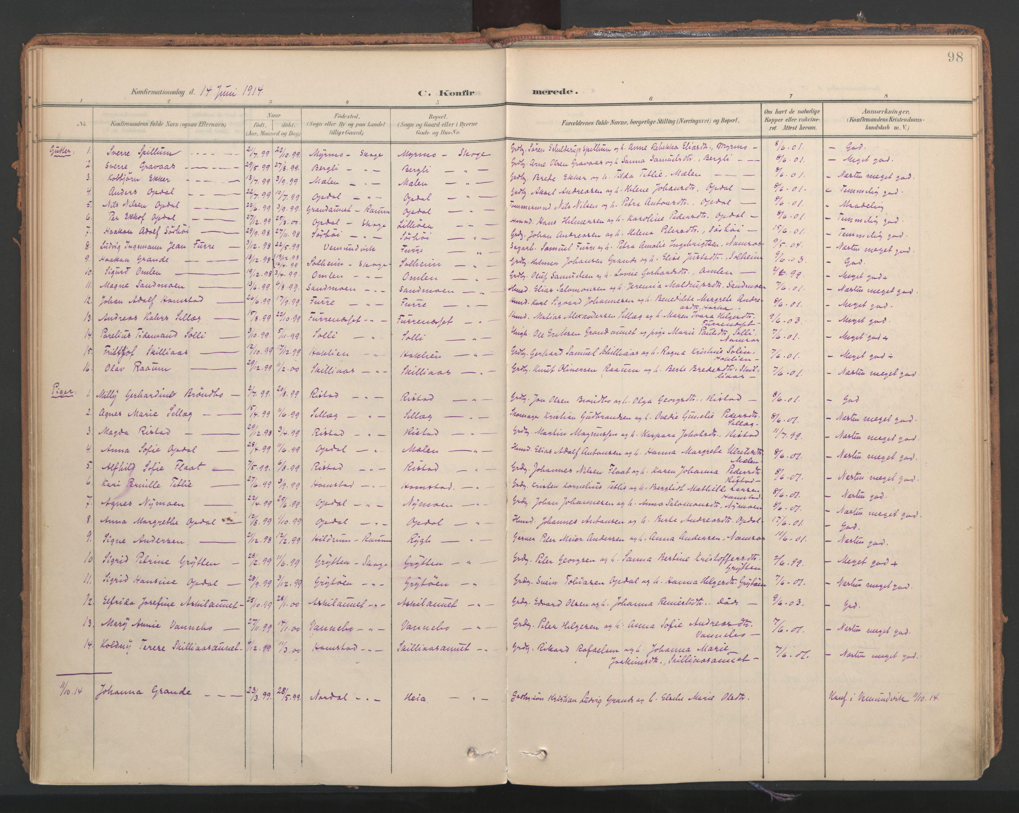 SAT, Ministerialprotokoller, klokkerbøker og fødselsregistre - Nord-Trøndelag, 766/L0564: Ministerialbok nr. 767A02, 1900-1932, s. 98