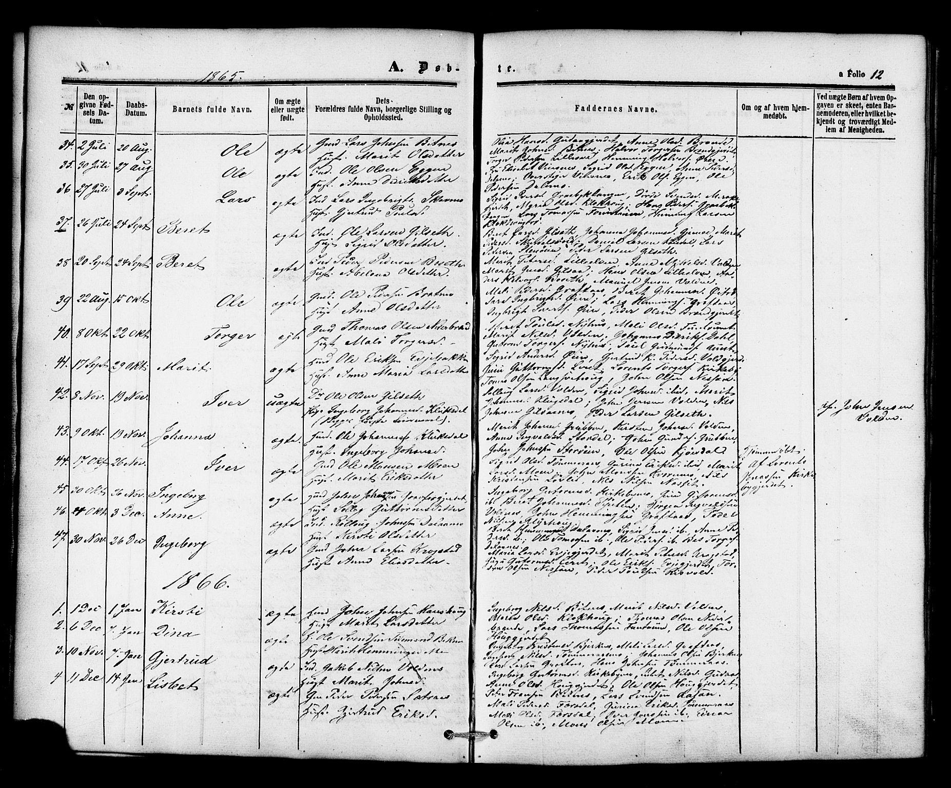 SAT, Ministerialprotokoller, klokkerbøker og fødselsregistre - Nord-Trøndelag, 706/L0041: Ministerialbok nr. 706A02, 1862-1877, s. 12