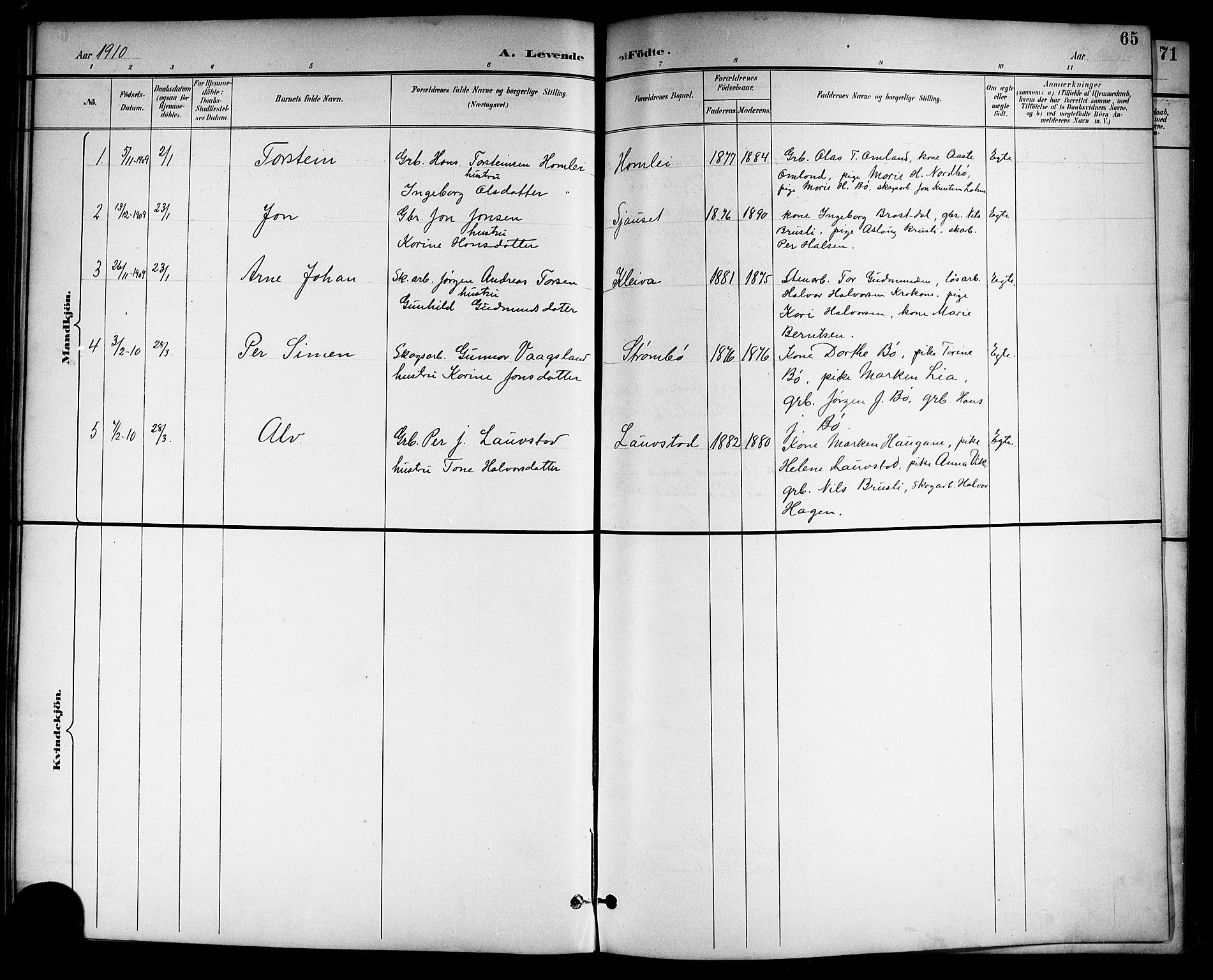 SAKO, Drangedal kirkebøker, G/Gb/L0002: Klokkerbok nr. II 2, 1895-1918, s. 65
