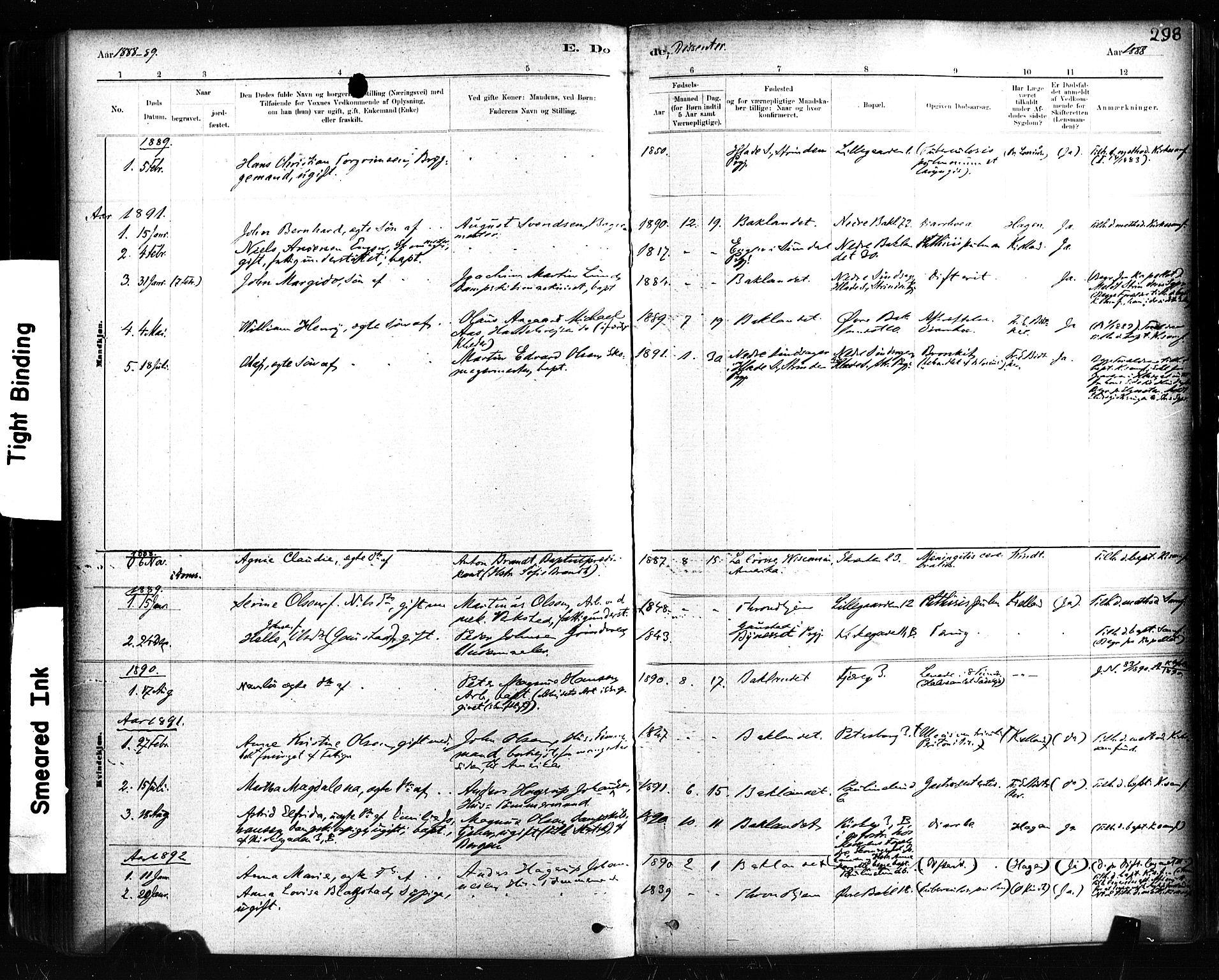 SAT, Ministerialprotokoller, klokkerbøker og fødselsregistre - Sør-Trøndelag, 604/L0189: Ministerialbok nr. 604A10, 1878-1892, s. 298