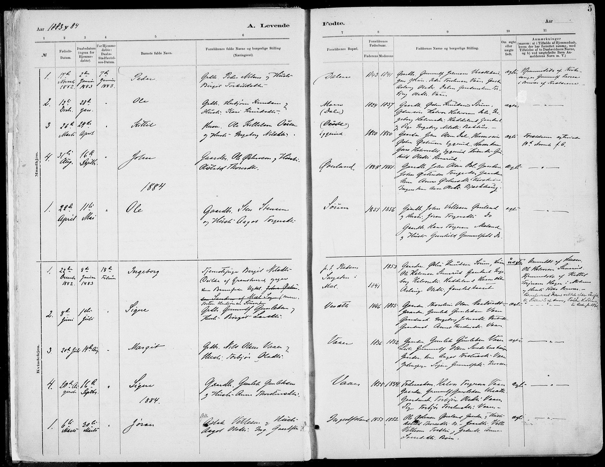 SAKO, Rjukan kirkebøker, F/Fa/L0001: Ministerialbok nr. 1, 1878-1912, s. 5