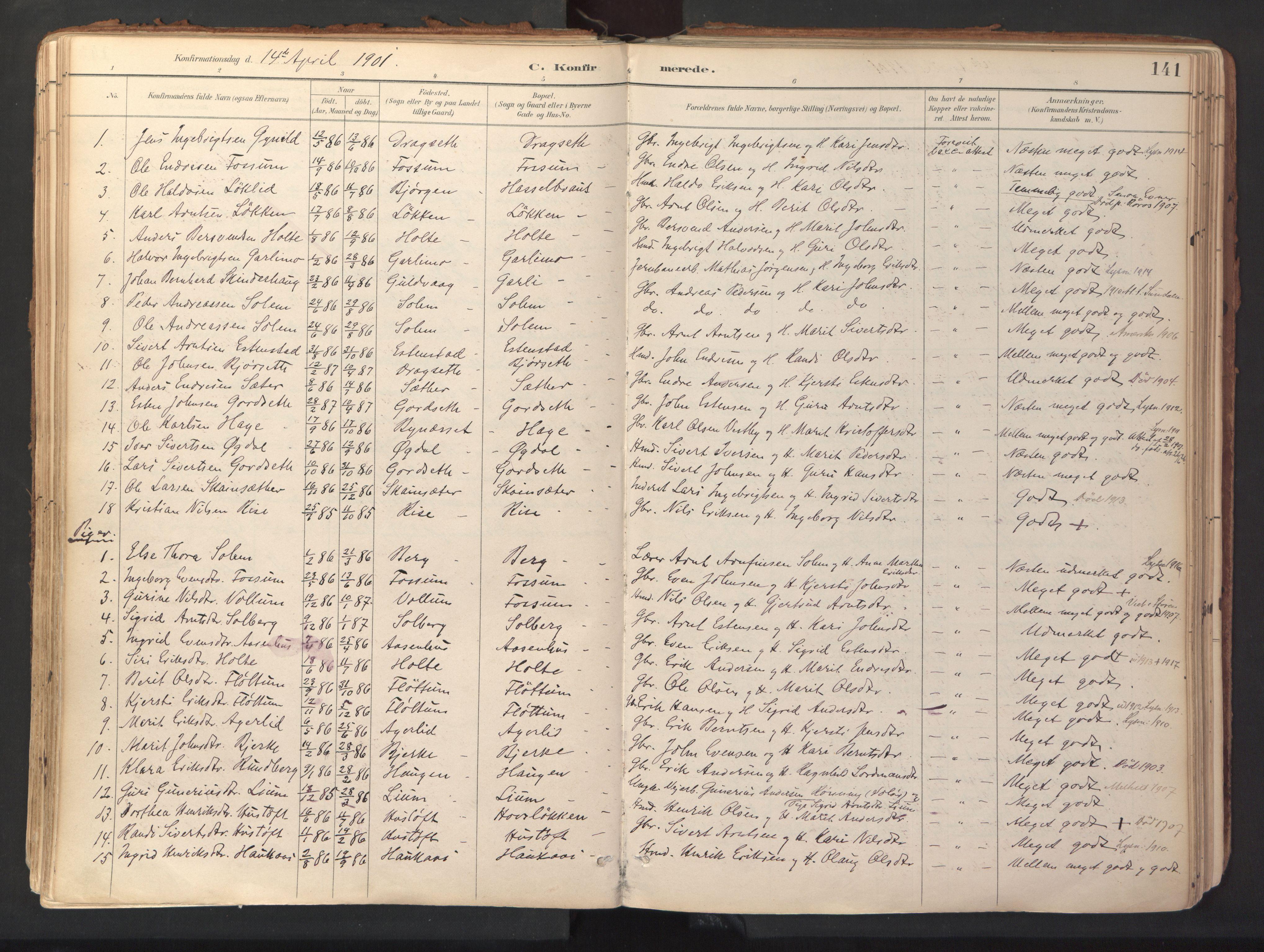 SAT, Ministerialprotokoller, klokkerbøker og fødselsregistre - Sør-Trøndelag, 689/L1041: Ministerialbok nr. 689A06, 1891-1923, s. 141