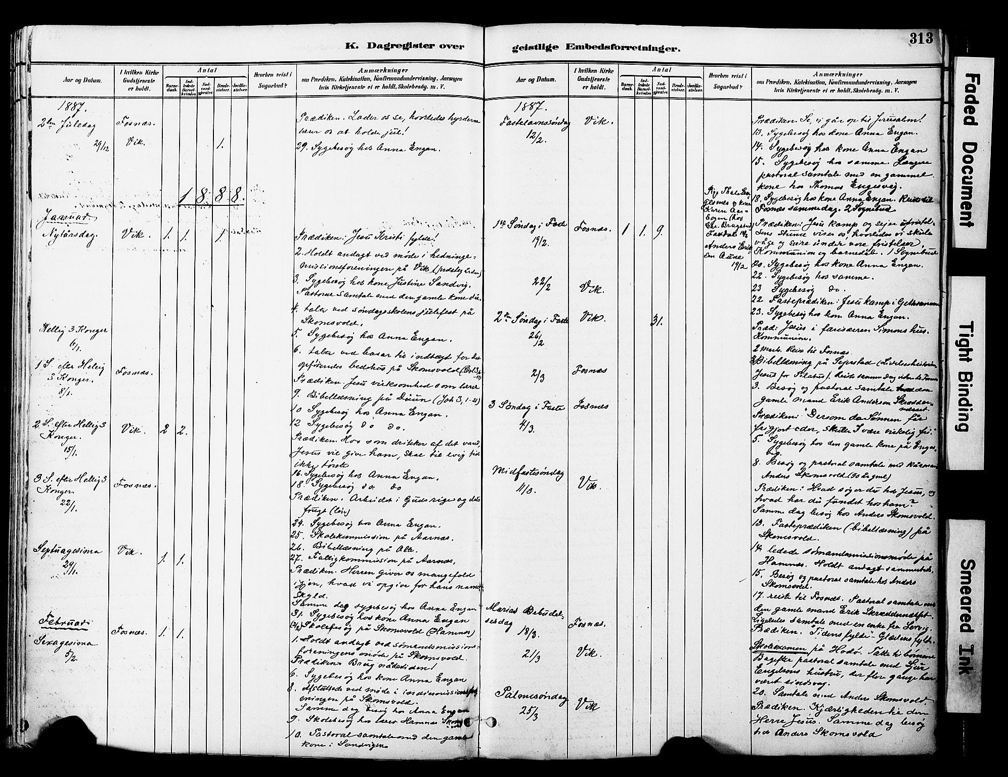 SAT, Ministerialprotokoller, klokkerbøker og fødselsregistre - Nord-Trøndelag, 774/L0628: Ministerialbok nr. 774A02, 1887-1903, s. 313