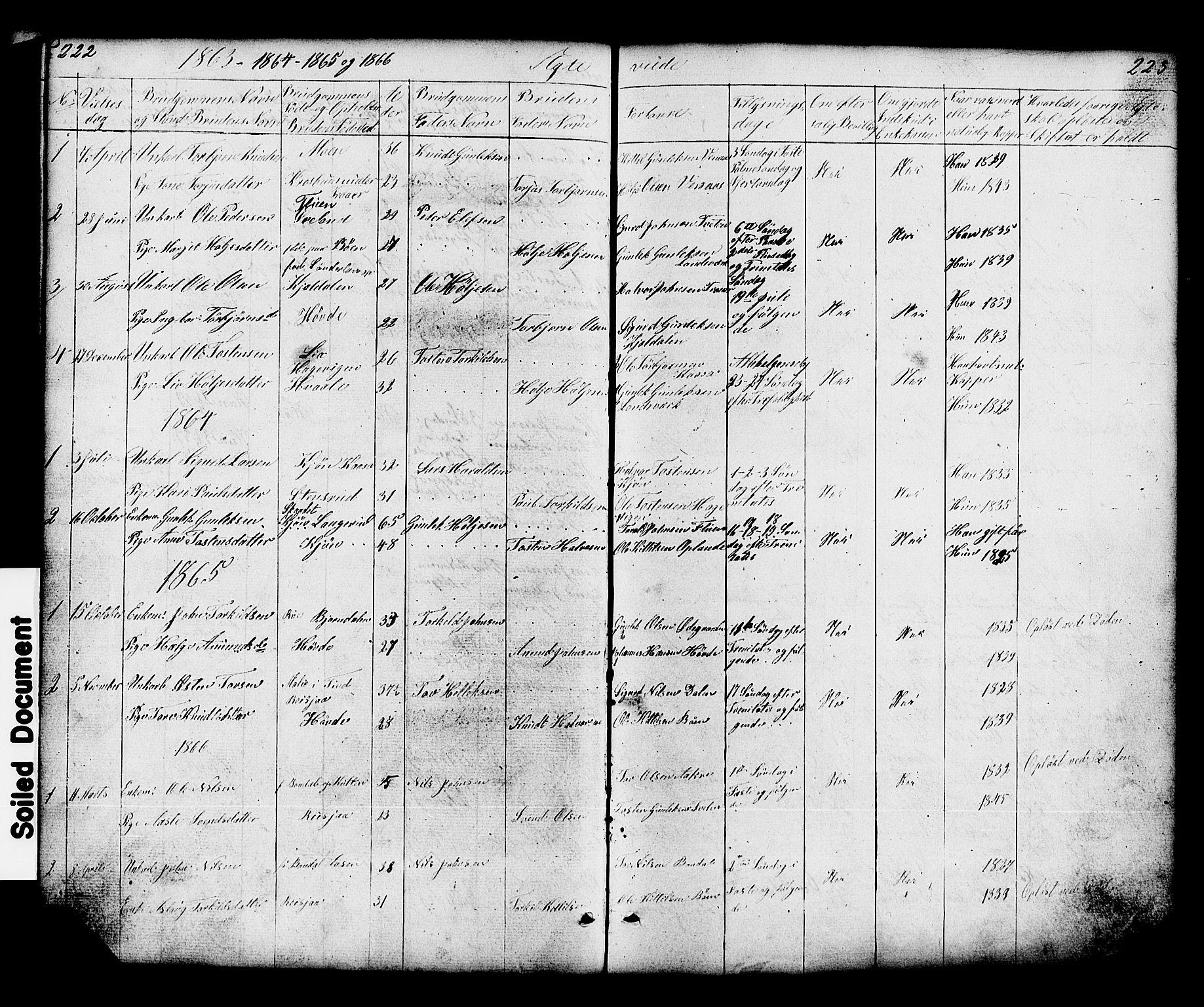 SAKO, Hjartdal kirkebøker, G/Gc/L0002: Klokkerbok nr. III 2, 1854-1890, s. 222-223