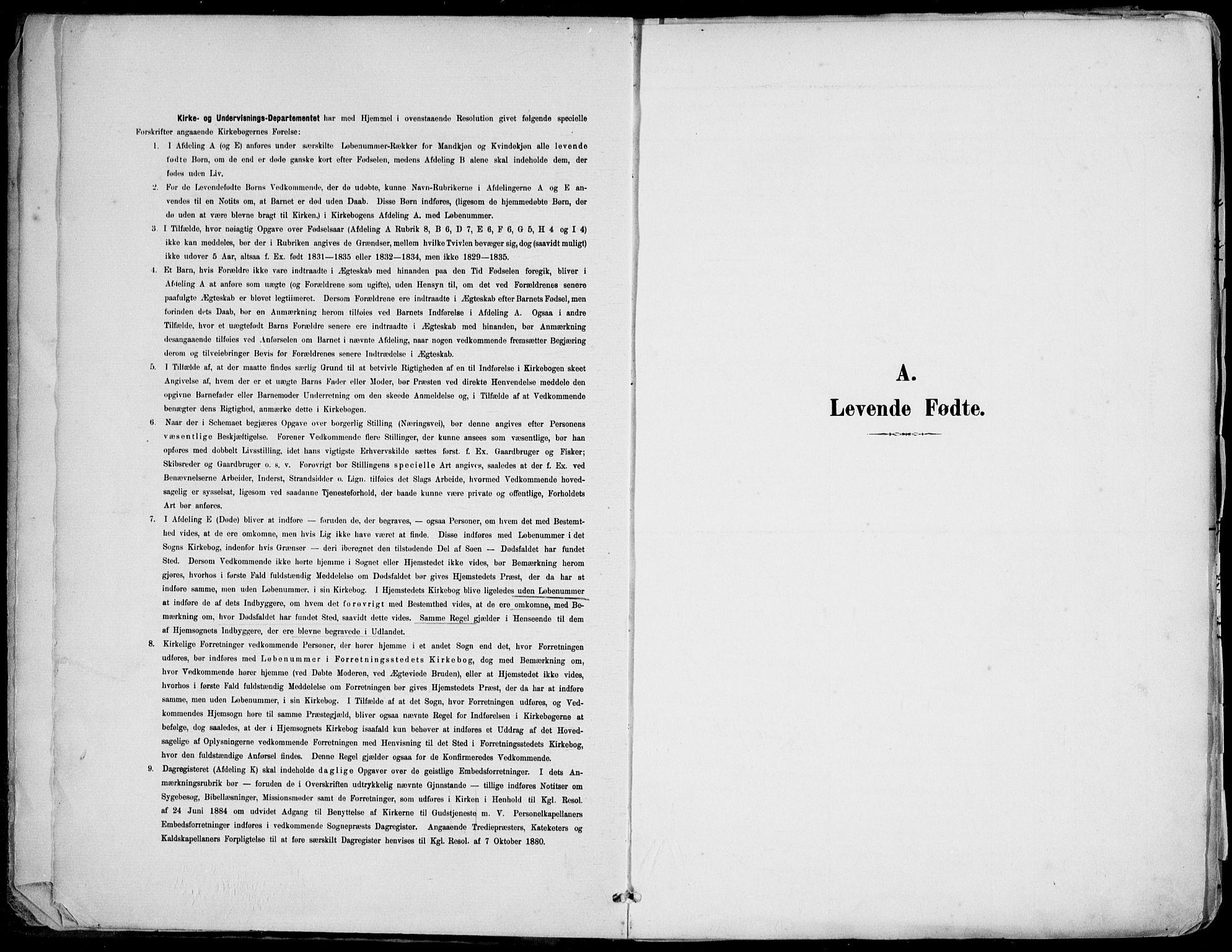 SAK, Barbu sokneprestkontor, F/Fa/L0005: Ministerialbok nr. A 5, 1899-1909