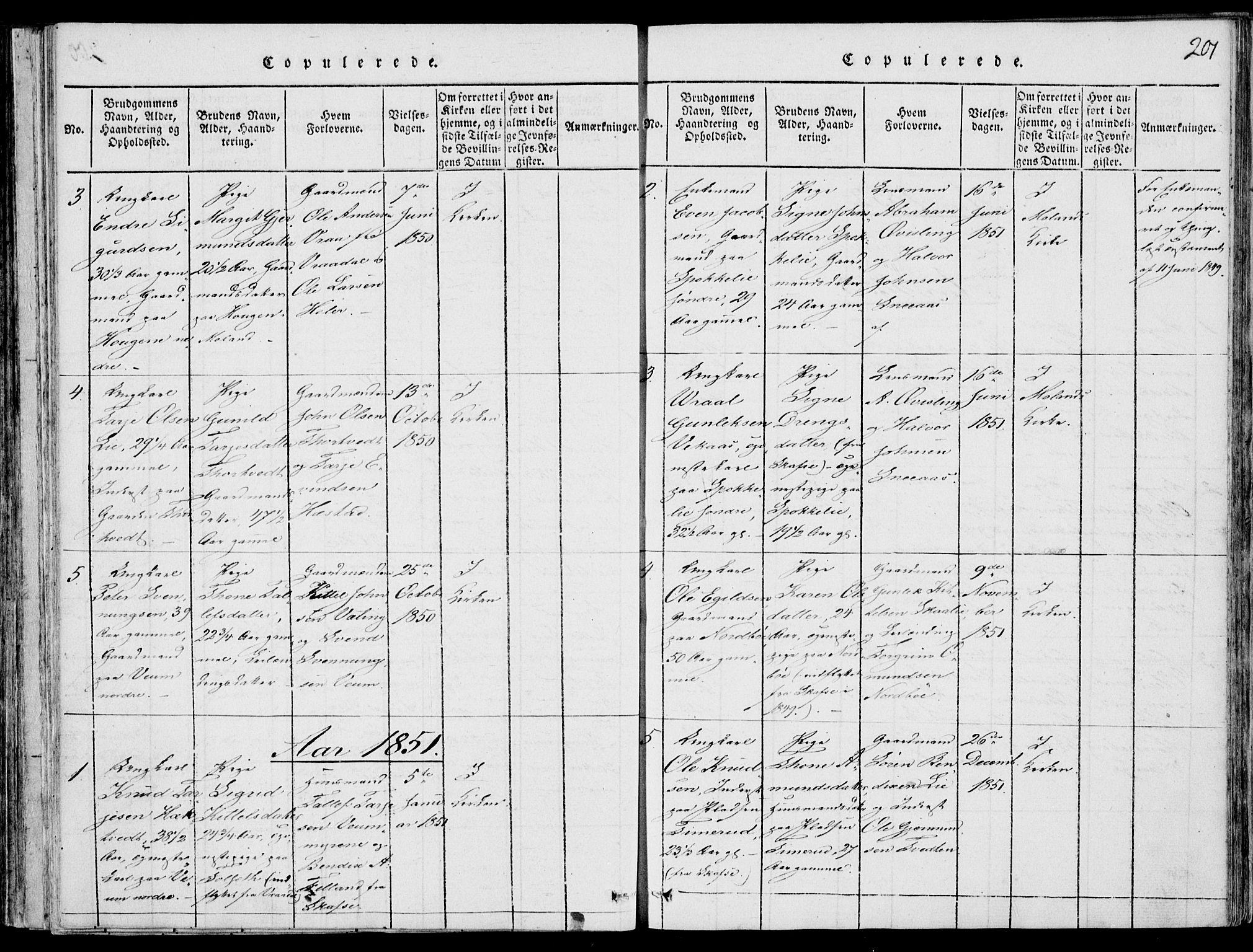 SAKO, Fyresdal kirkebøker, F/Fb/L0001: Ministerialbok nr. II 1, 1815-1854, s. 201