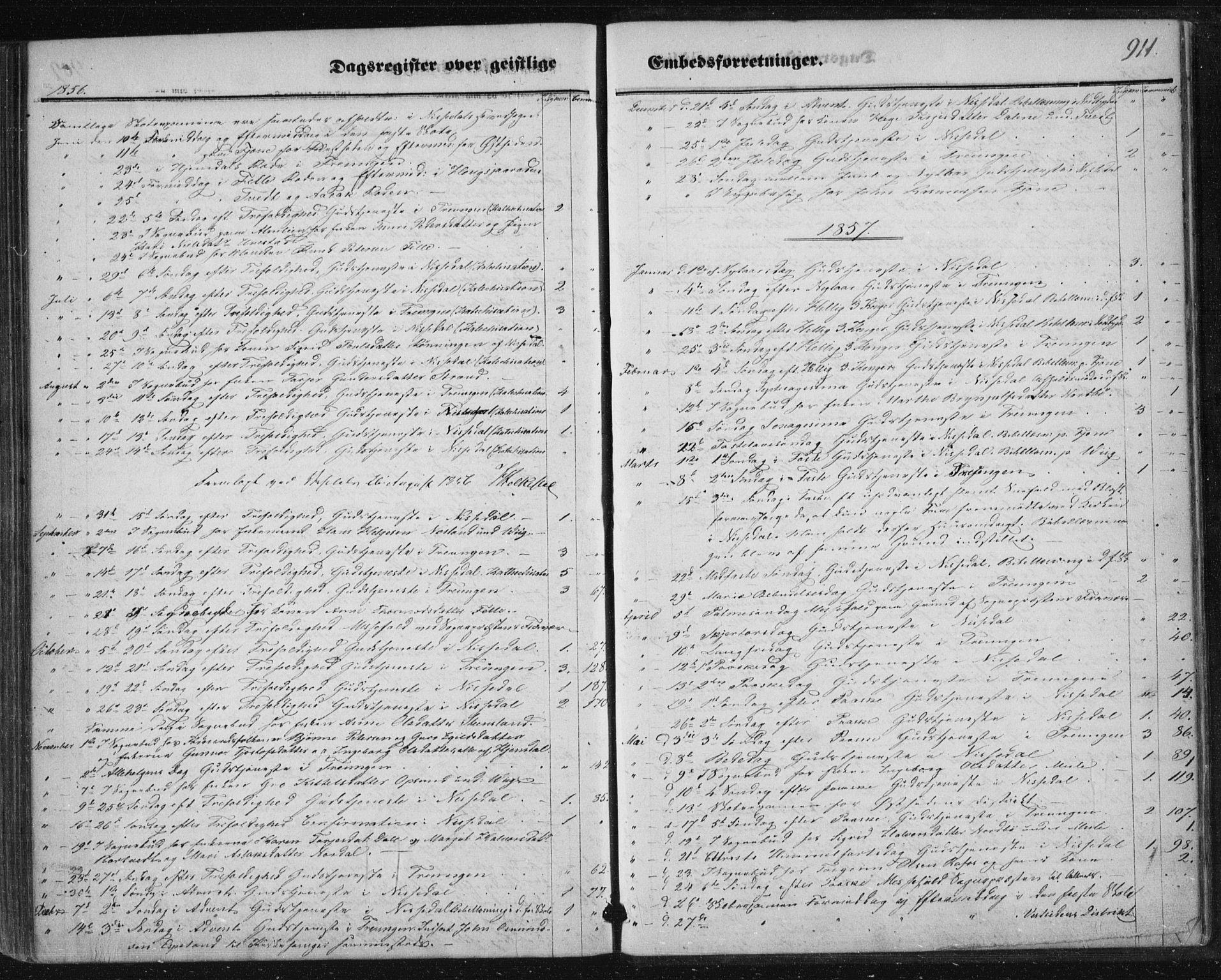 SAKO, Nissedal kirkebøker, F/Fa/L0003: Ministerialbok nr. I 3, 1846-1870, s. 910-911