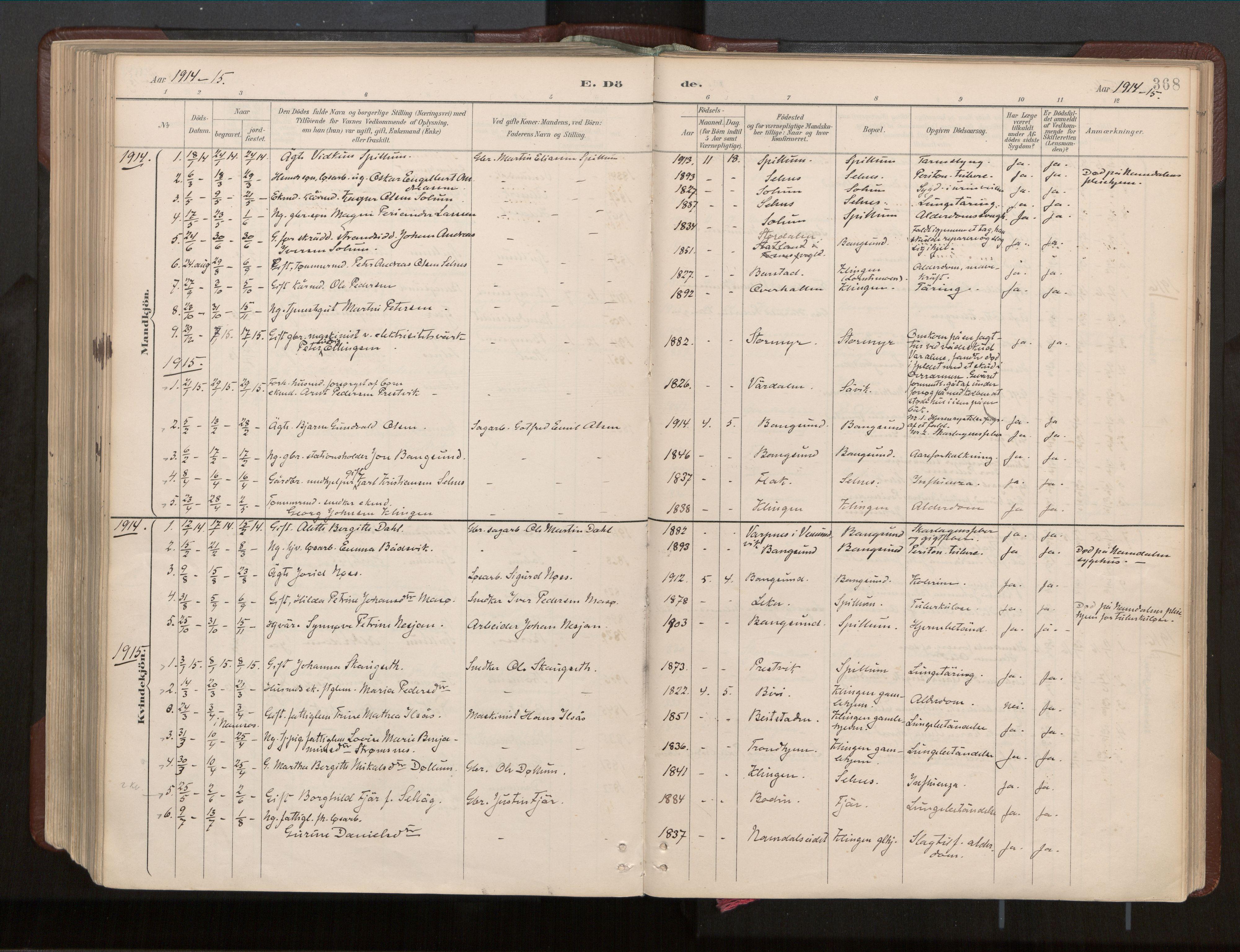 SAT, Ministerialprotokoller, klokkerbøker og fødselsregistre - Nord-Trøndelag, 770/L0589: Ministerialbok nr. 770A03, 1887-1929, s. 368