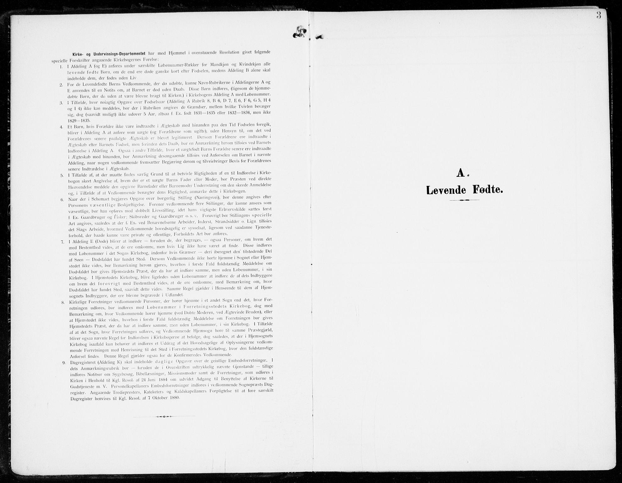 SAKO, Tjølling kirkebøker, F/Fa/L0010: Ministerialbok nr. 10, 1906-1923, s. 3
