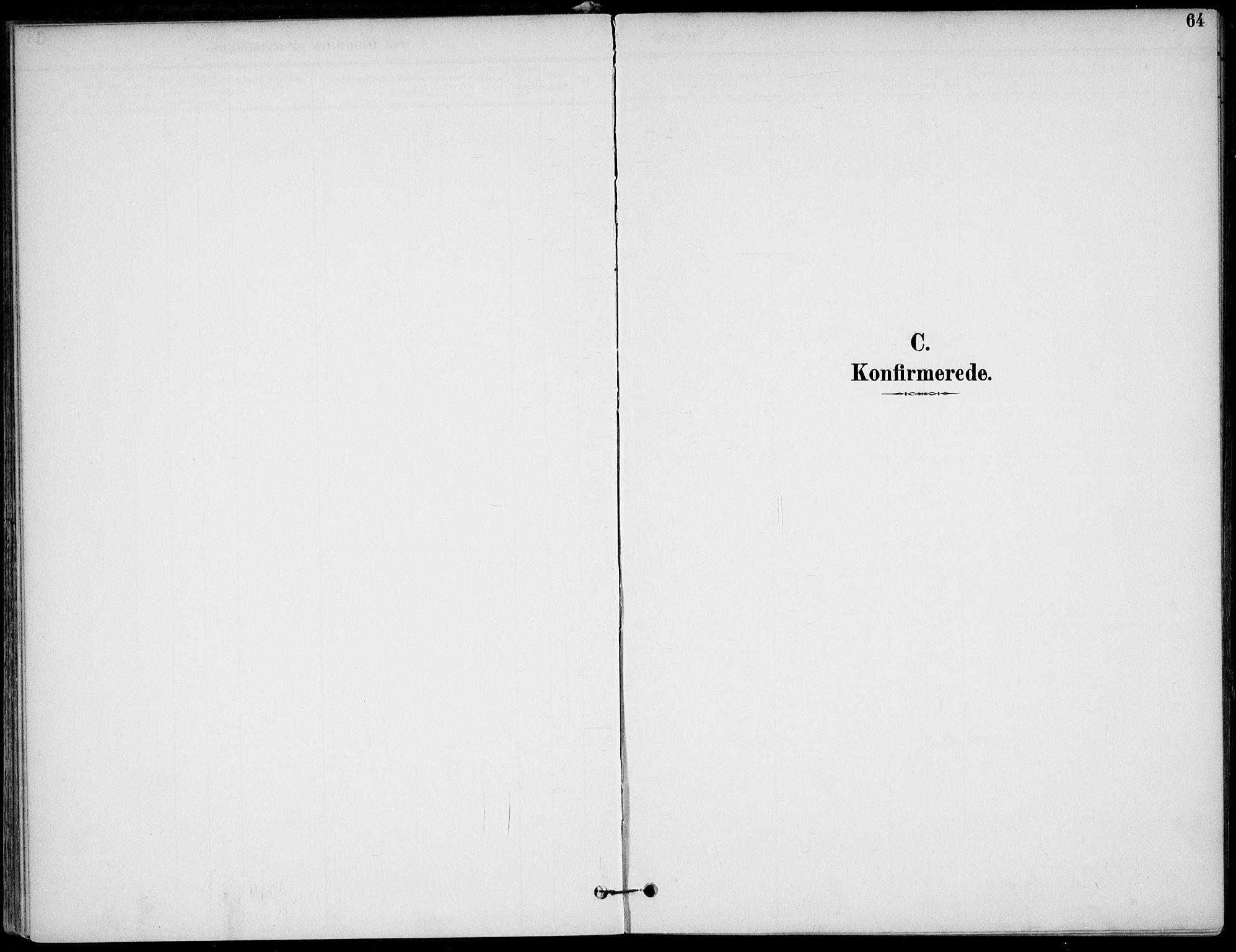 SAKO, Lunde kirkebøker, F/Fa/L0003: Ministerialbok nr. I 3, 1893-1902, s. 64