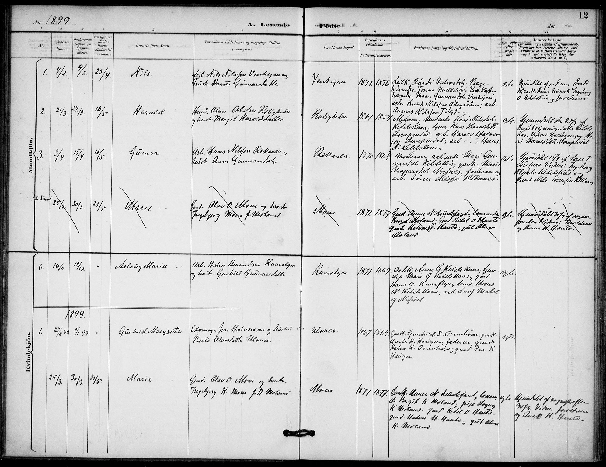 SAKO, Lunde kirkebøker, F/Fb/L0004: Ministerialbok nr. II 4, 1892-1907, s. 12
