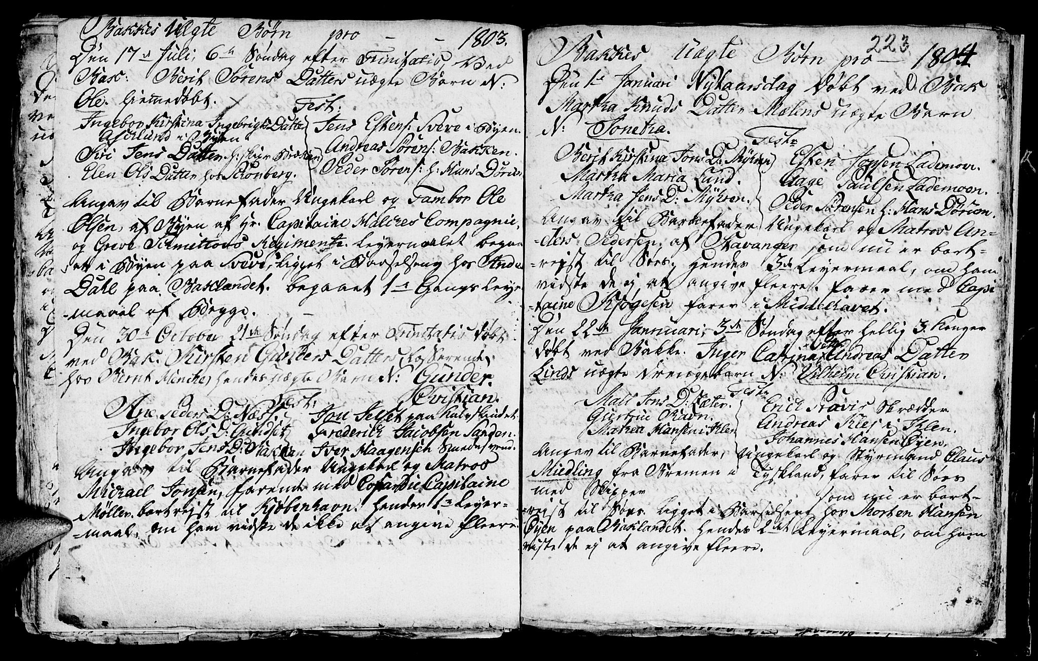SAT, Ministerialprotokoller, klokkerbøker og fødselsregistre - Sør-Trøndelag, 604/L0218: Klokkerbok nr. 604C01, 1754-1819, s. 223