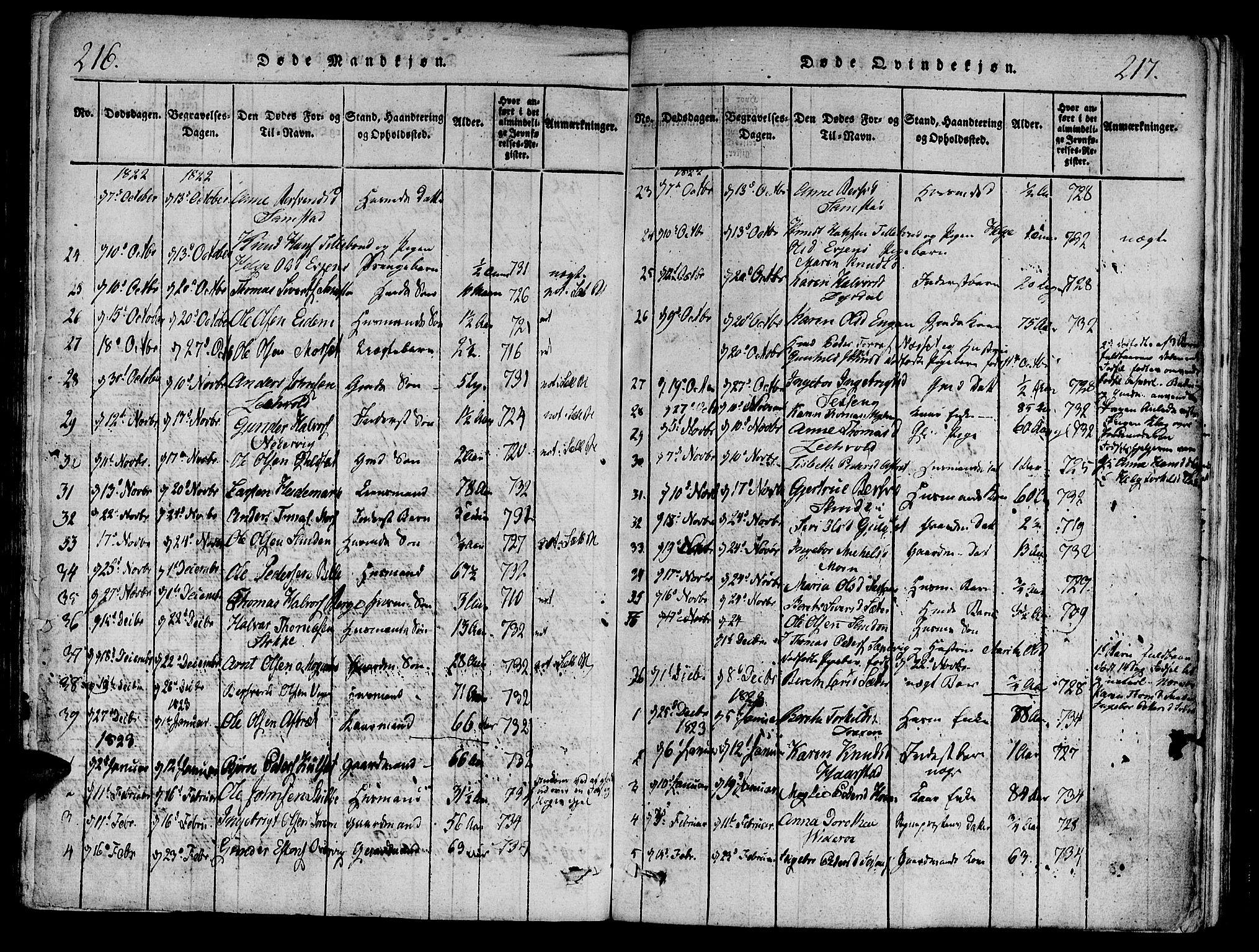 SAT, Ministerialprotokoller, klokkerbøker og fødselsregistre - Sør-Trøndelag, 695/L1141: Ministerialbok nr. 695A04 /1, 1816-1824, s. 216-217