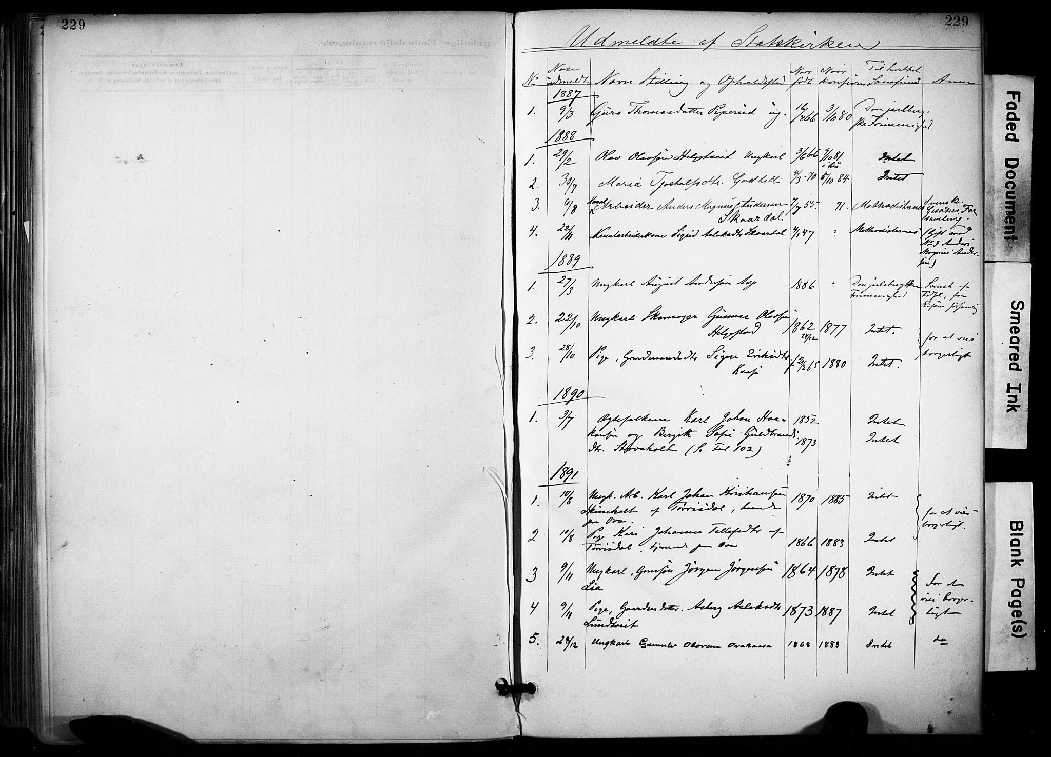 SAKO, Lunde kirkebøker, F/Fa/L0002: Ministerialbok nr. I 2, 1884-1892, s. 229