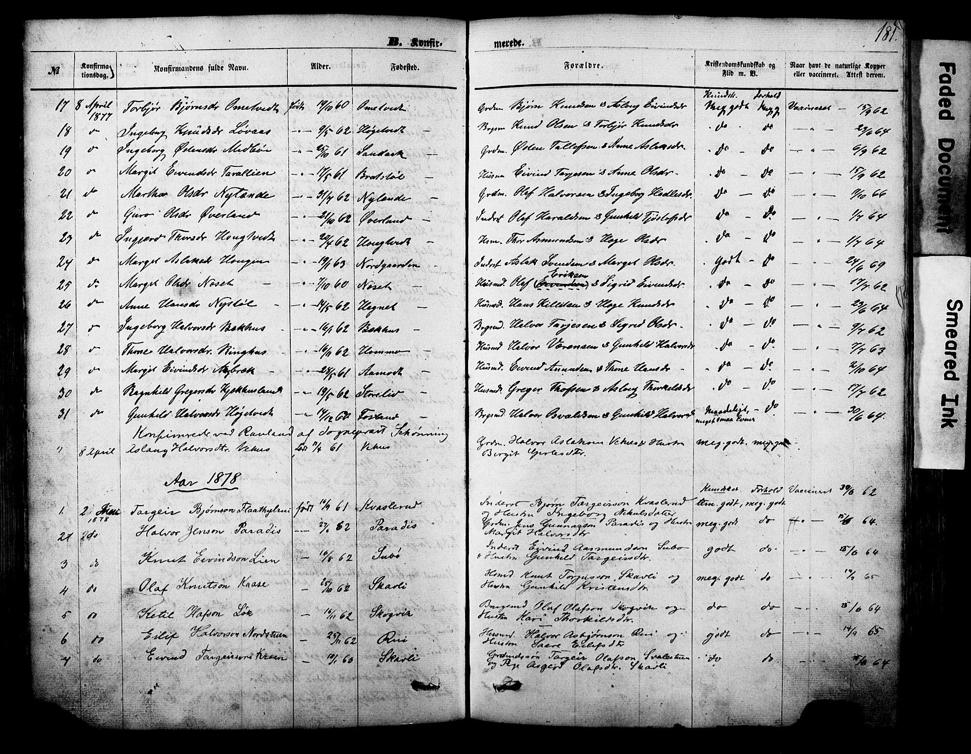 SAKO, Vinje kirkebøker, F/Fa/L0005: Ministerialbok nr. I 5, 1870-1886, s. 181
