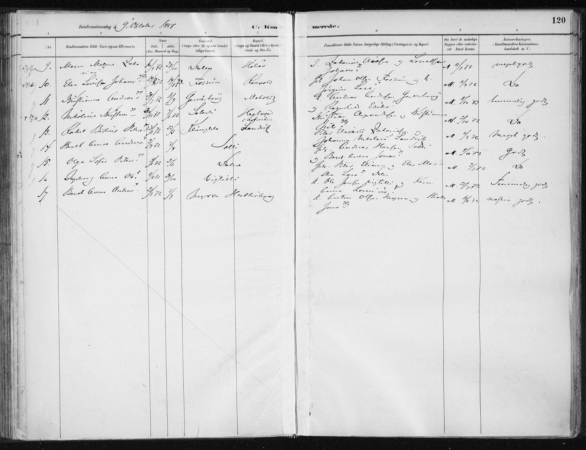 SAT, Ministerialprotokoller, klokkerbøker og fødselsregistre - Nord-Trøndelag, 701/L0010: Ministerialbok nr. 701A10, 1883-1899, s. 120
