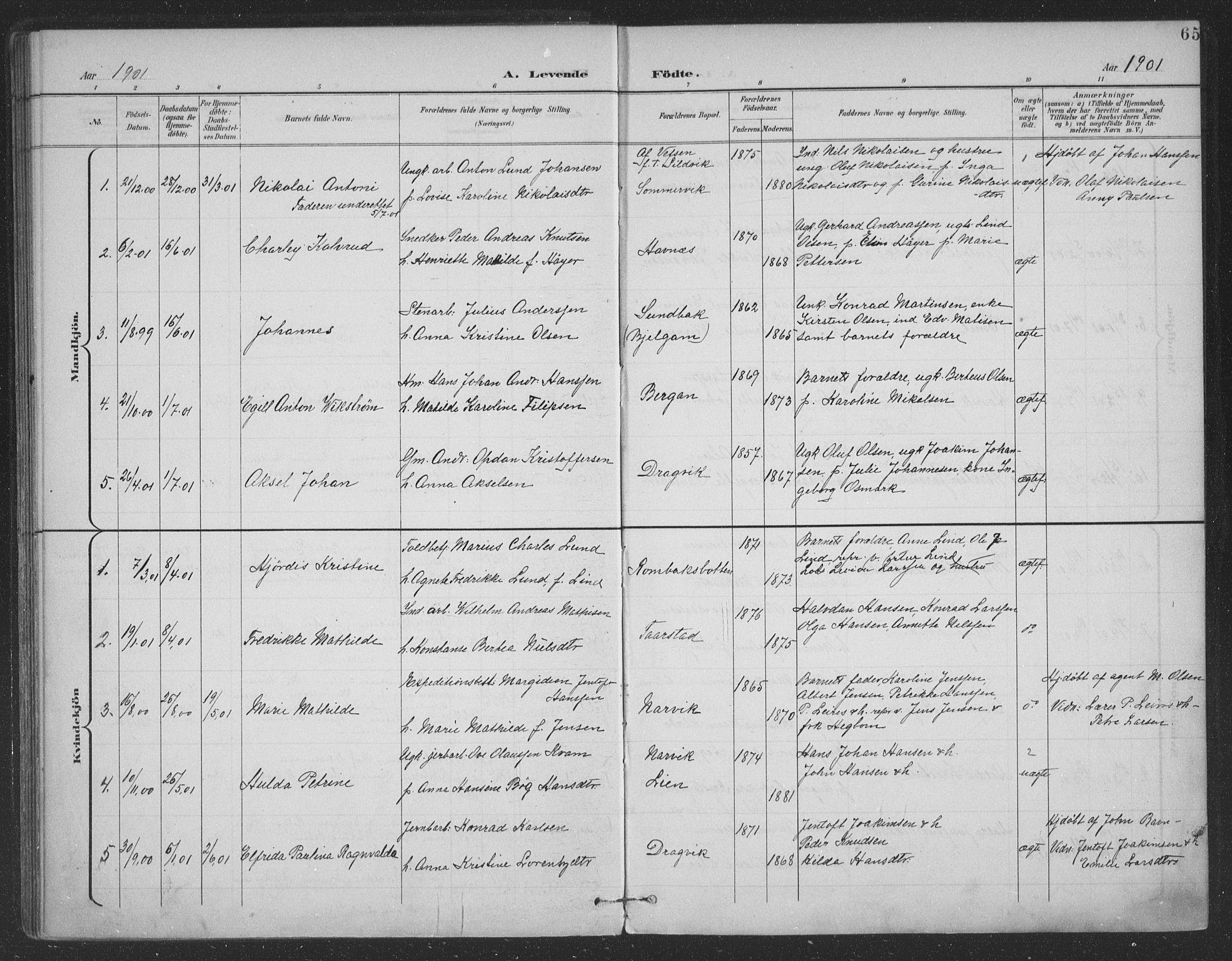 SAT, Ministerialprotokoller, klokkerbøker og fødselsregistre - Nordland, 863/L0899: Ministerialbok nr. 863A11, 1897-1906, s. 65