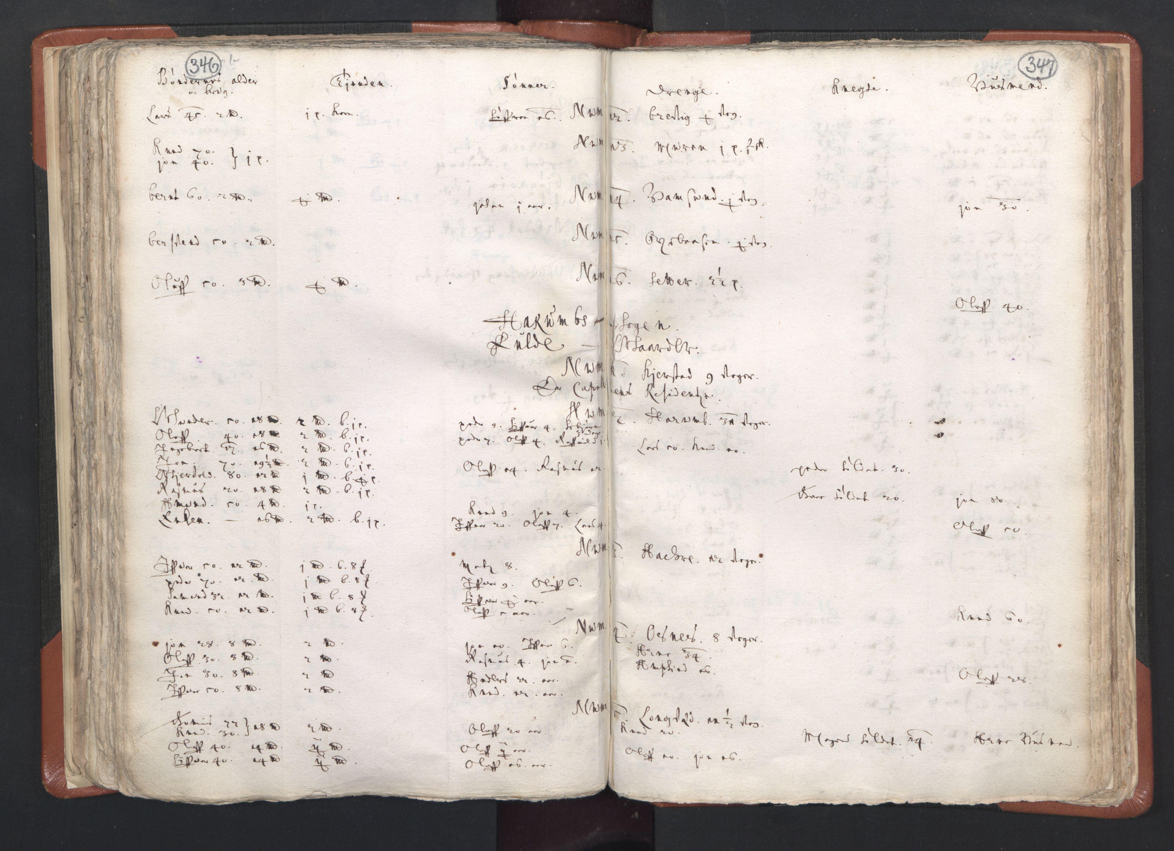 RA, Sogneprestenes manntall 1664-1666, nr. 26: Sunnmøre prosti, 1664-1666, s. 346-347
