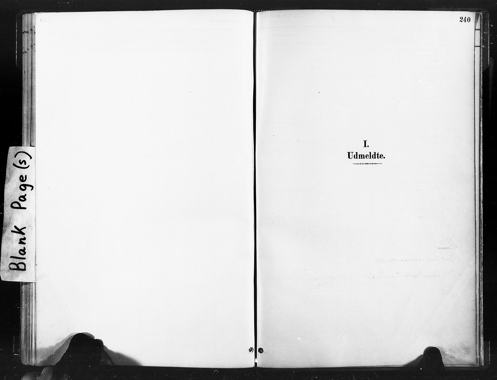 SAT, Ministerialprotokoller, klokkerbøker og fødselsregistre - Nord-Trøndelag, 736/L0361: Ministerialbok nr. 736A01, 1884-1906, s. 240