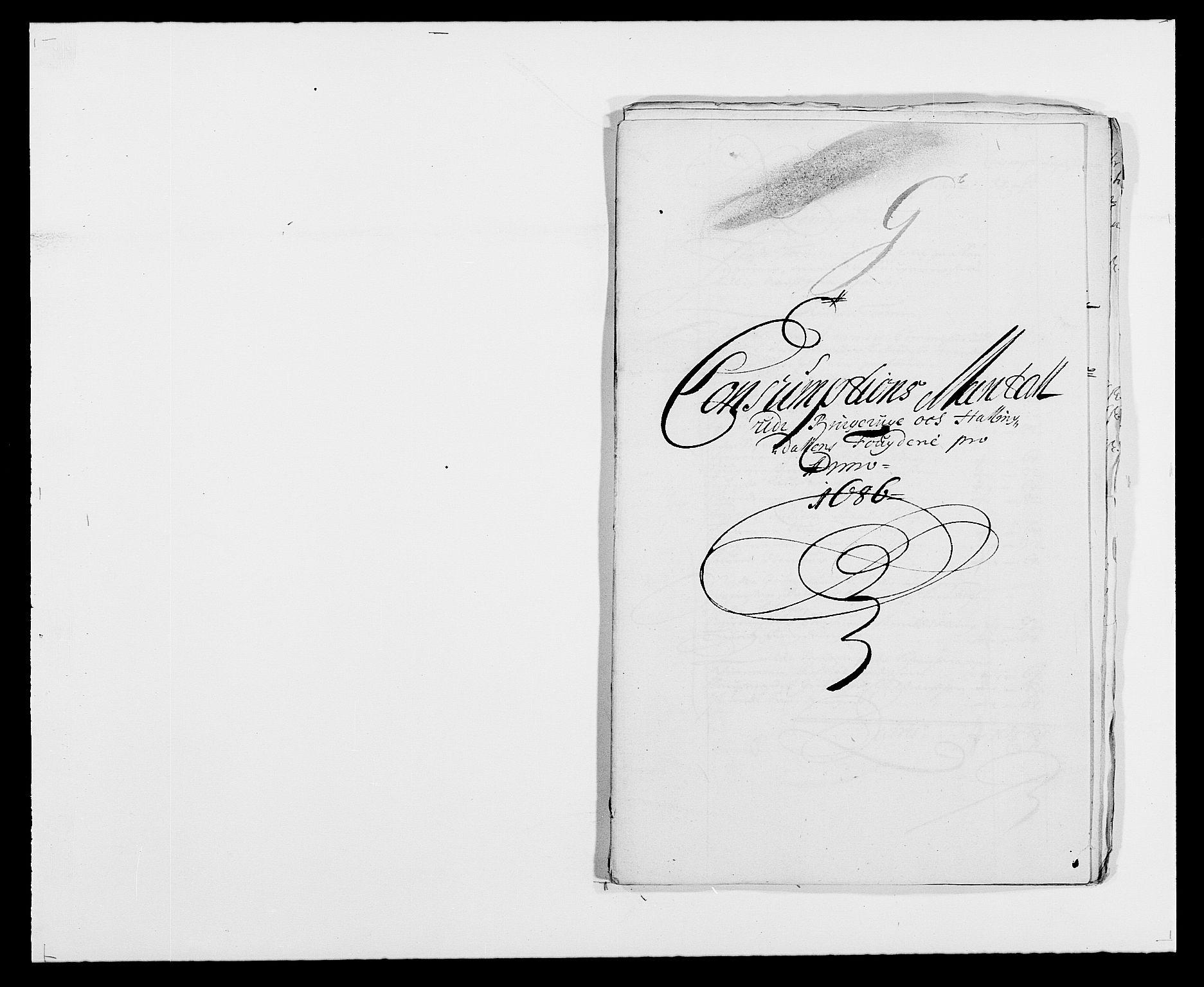 RA, Rentekammeret inntil 1814, Reviderte regnskaper, Fogderegnskap, R21/L1446: Fogderegnskap Ringerike og Hallingdal, 1683-1686, s. 495