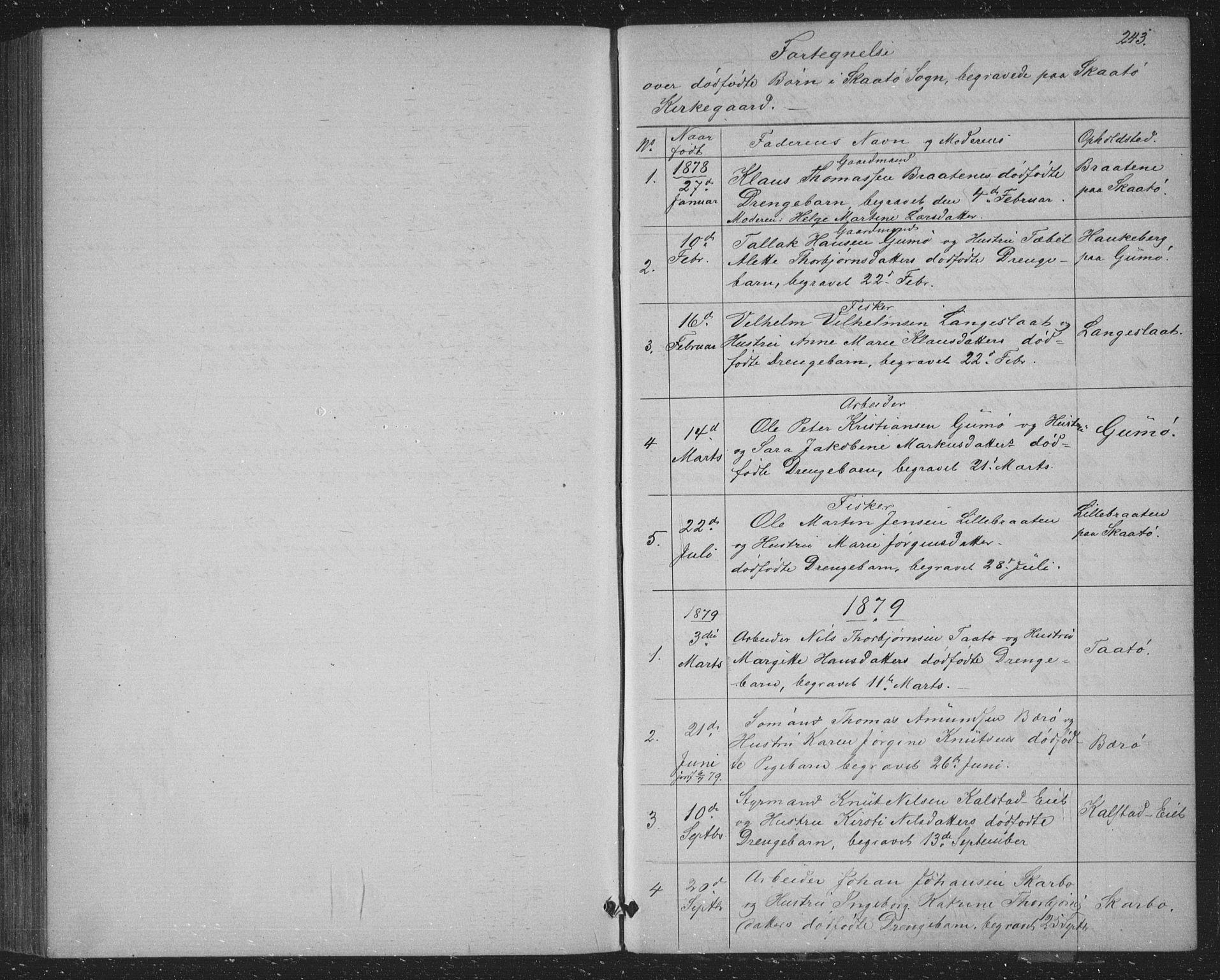 SAKO, Skåtøy kirkebøker, G/Ga/L0002: Klokkerbok nr. I 2, 1872-1884, s. 243