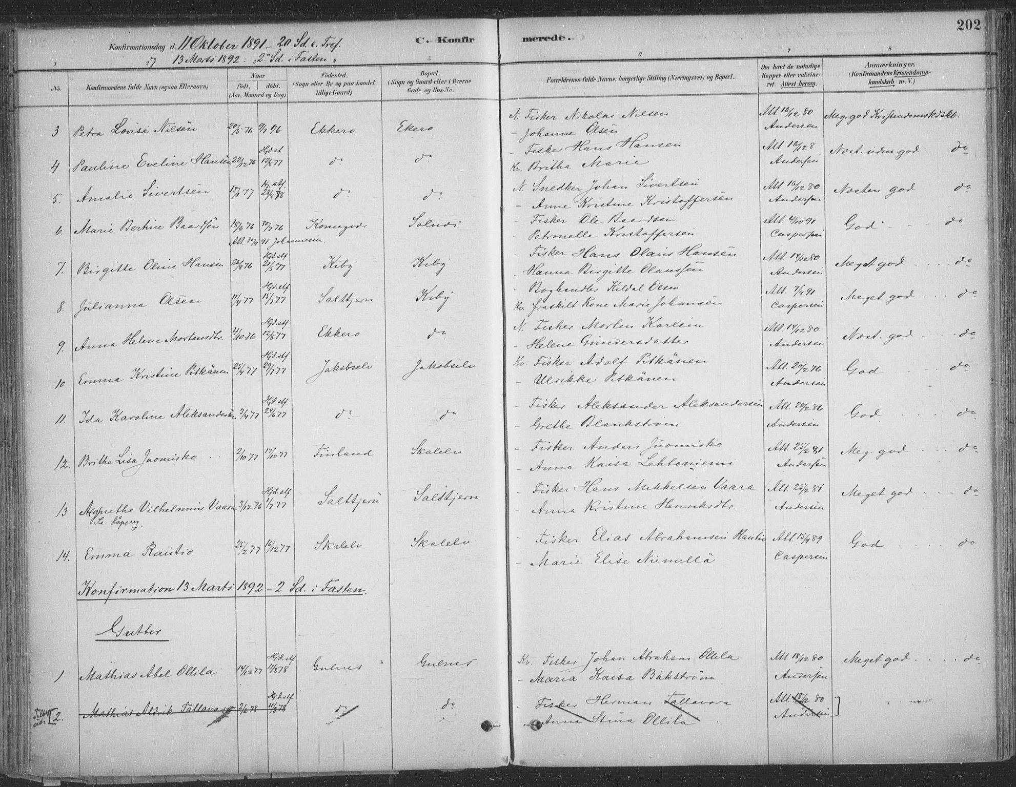 SATØ, Vadsø sokneprestkontor, H/Ha/L0009kirke: Ministerialbok nr. 9, 1881-1917, s. 202