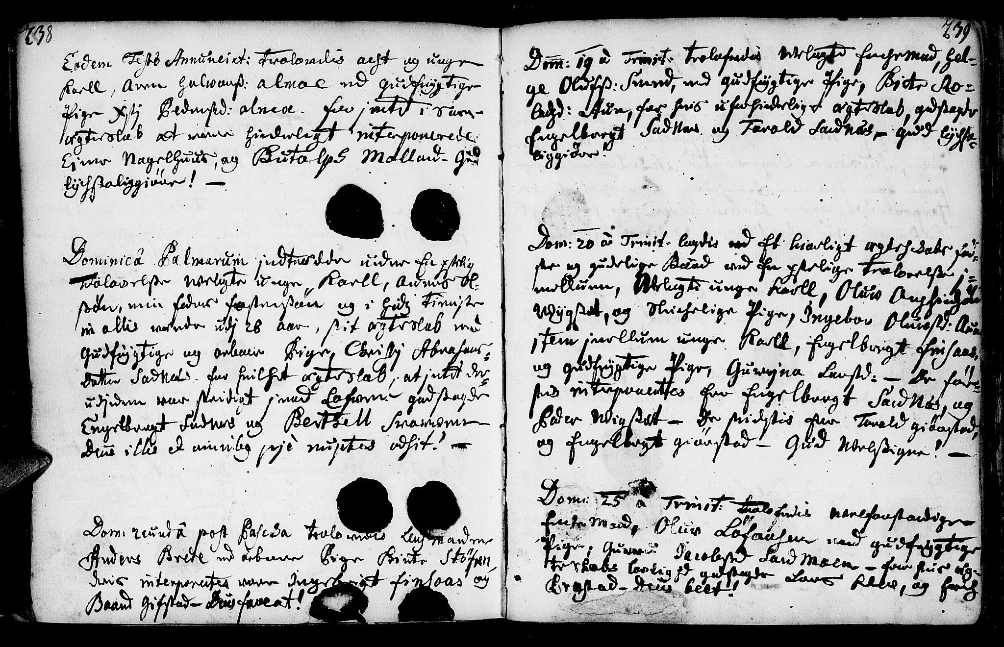 SAT, Ministerialprotokoller, klokkerbøker og fødselsregistre - Nord-Trøndelag, 749/L0467: Ministerialbok nr. 749A01, 1733-1787, s. 238-239