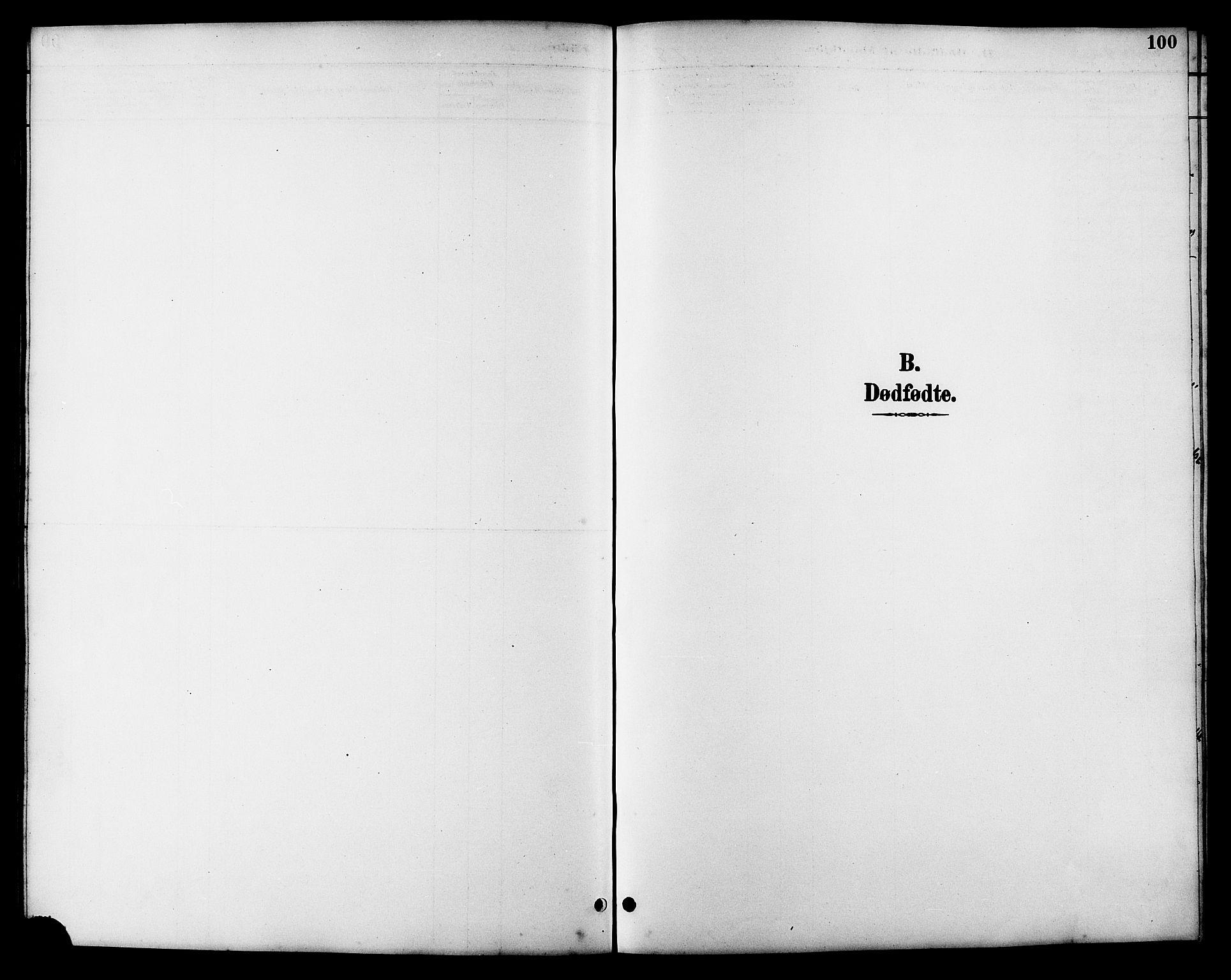 SAT, Ministerialprotokoller, klokkerbøker og fødselsregistre - Sør-Trøndelag, 657/L0716: Klokkerbok nr. 657C03, 1889-1904, s. 100