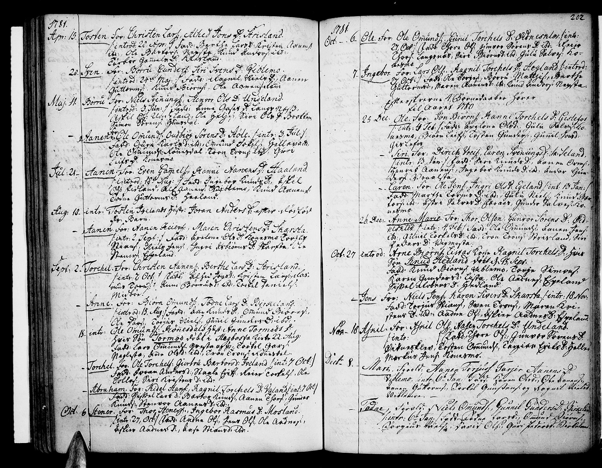 SAK, Sør-Audnedal sokneprestkontor, F/Fa/Fab/L0002: Ministerialbok nr. A 2 /4, 1768-1814, s. 202