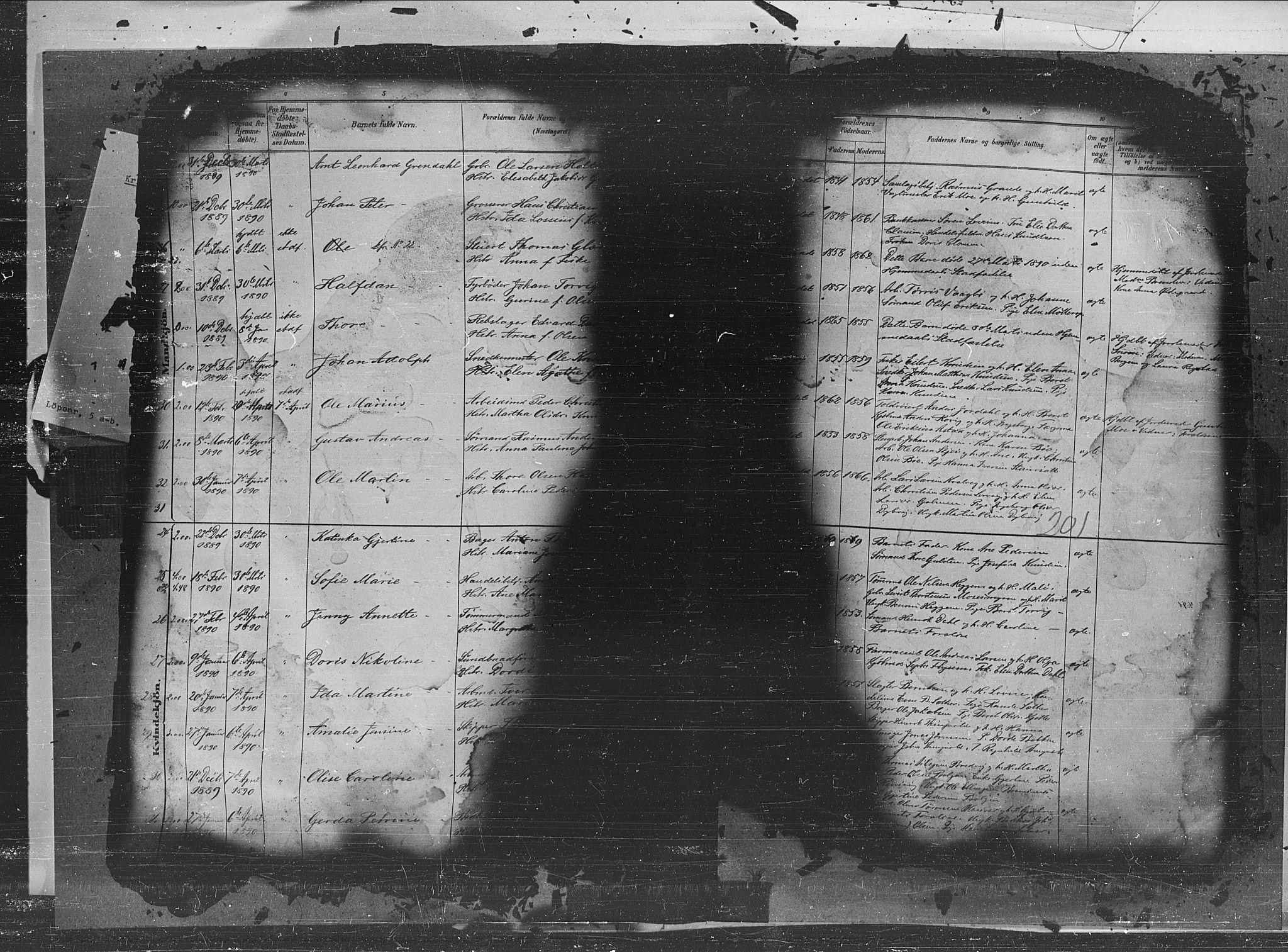 SAT, Ministerialprotokoller, klokkerbøker og fødselsregistre - Møre og Romsdal, 572/L0851: Ministerialbok nr. 572A14, 1880-1897, s. 201