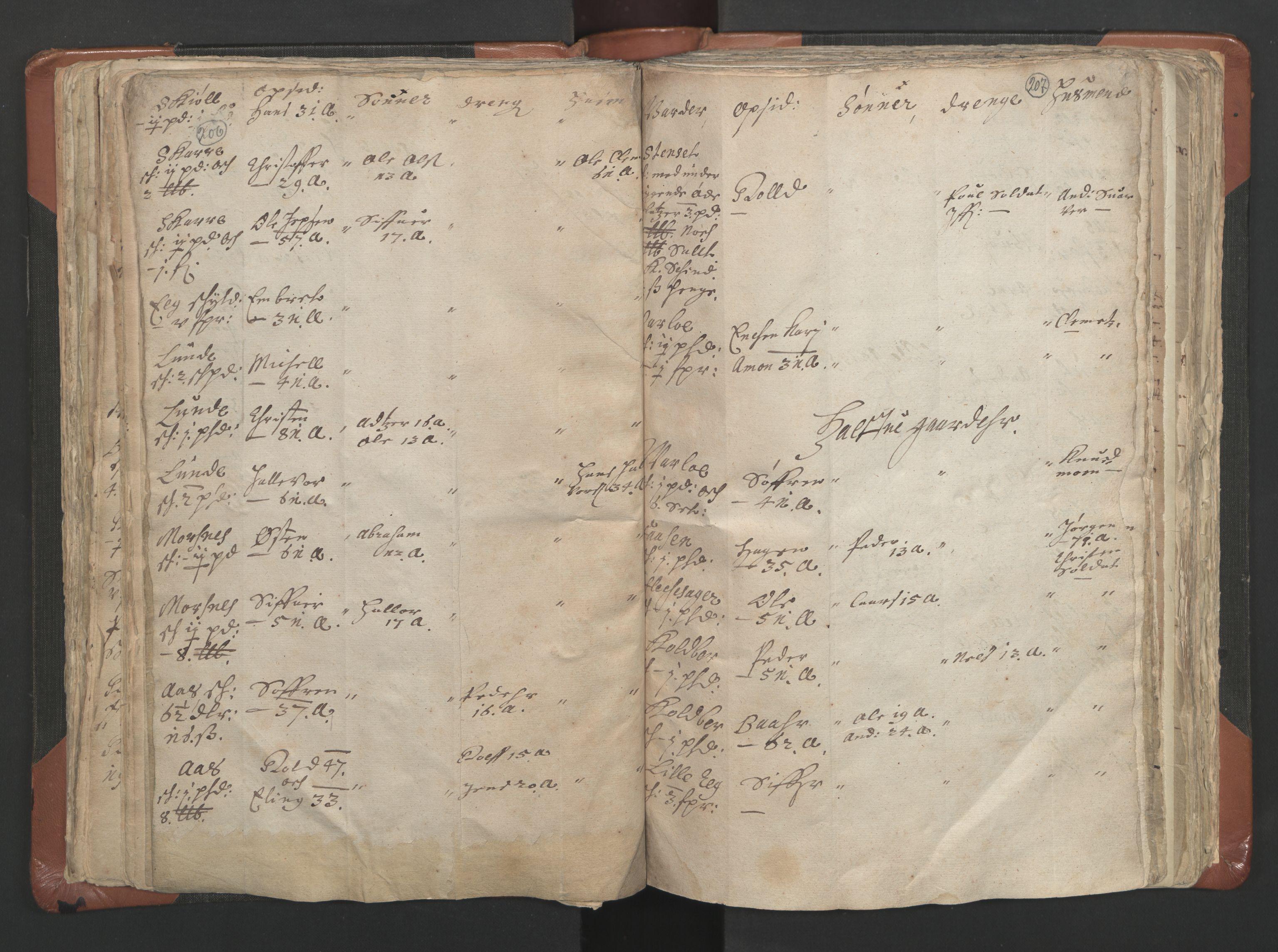 RA, Sogneprestenes manntall 1664-1666, nr. 9: Bragernes prosti, 1664-1666, s. 206-207