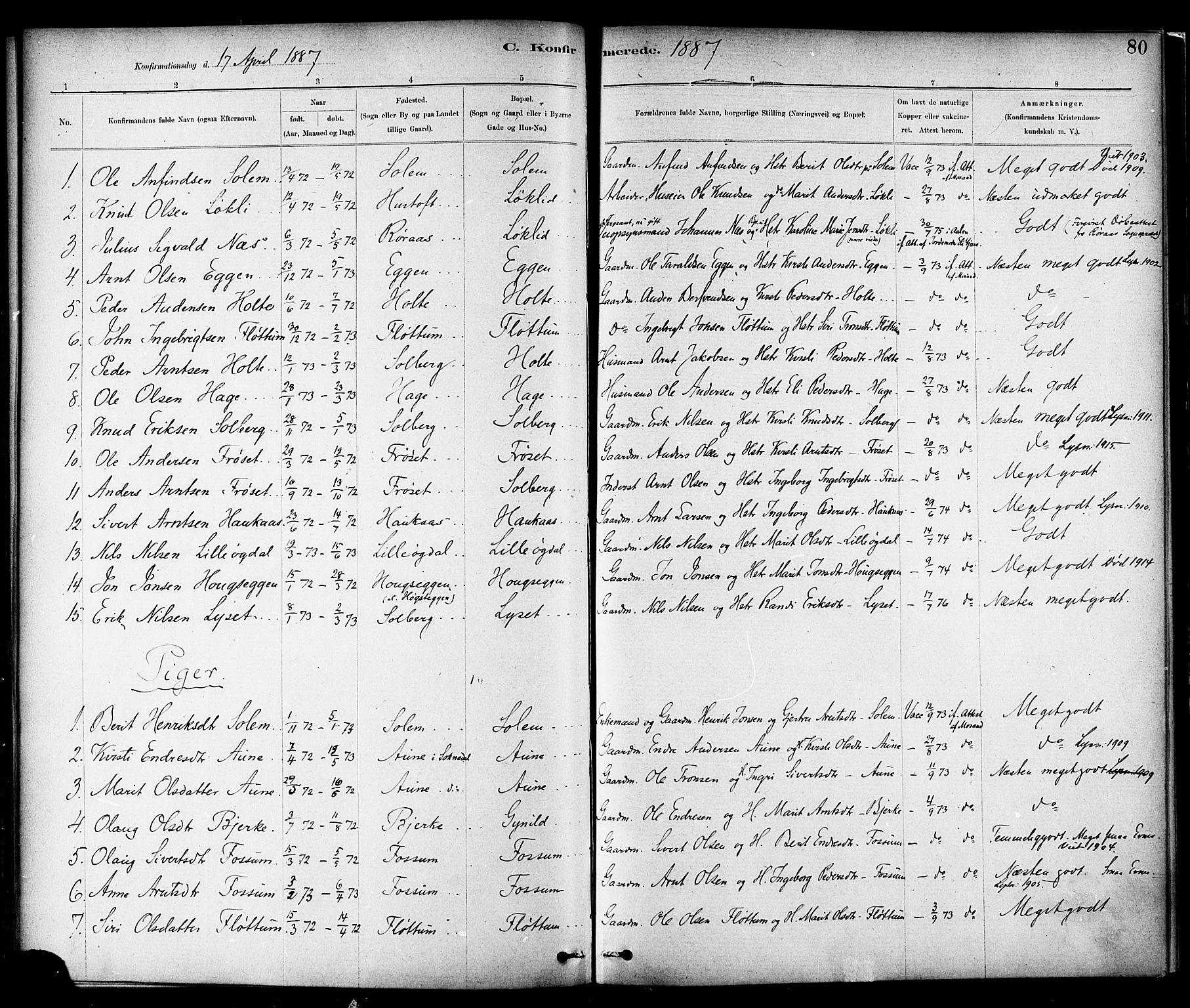 SAT, Ministerialprotokoller, klokkerbøker og fødselsregistre - Sør-Trøndelag, 689/L1040: Ministerialbok nr. 689A05, 1878-1890, s. 80