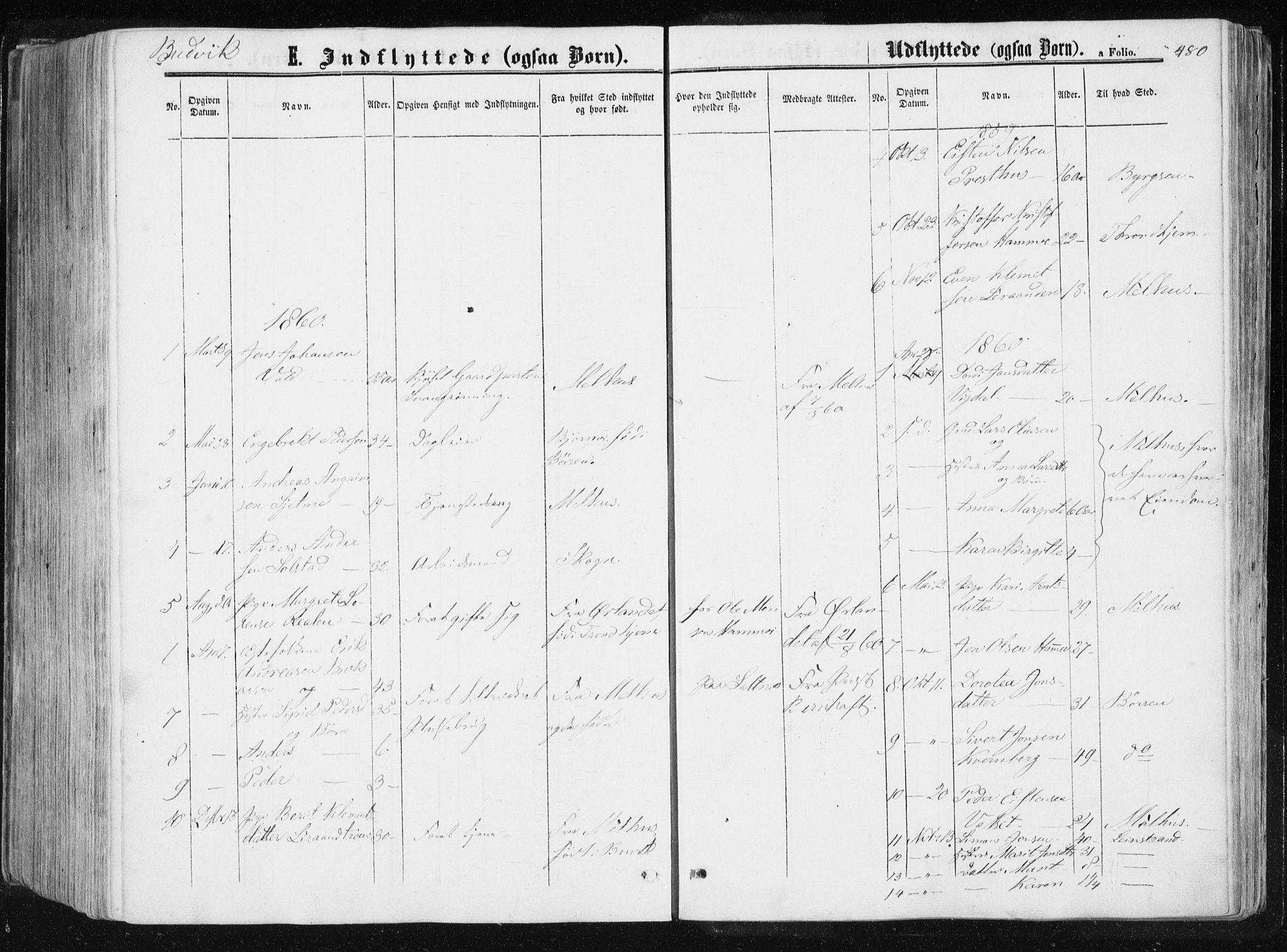 SAT, Ministerialprotokoller, klokkerbøker og fødselsregistre - Sør-Trøndelag, 612/L0377: Ministerialbok nr. 612A09, 1859-1877, s. 480