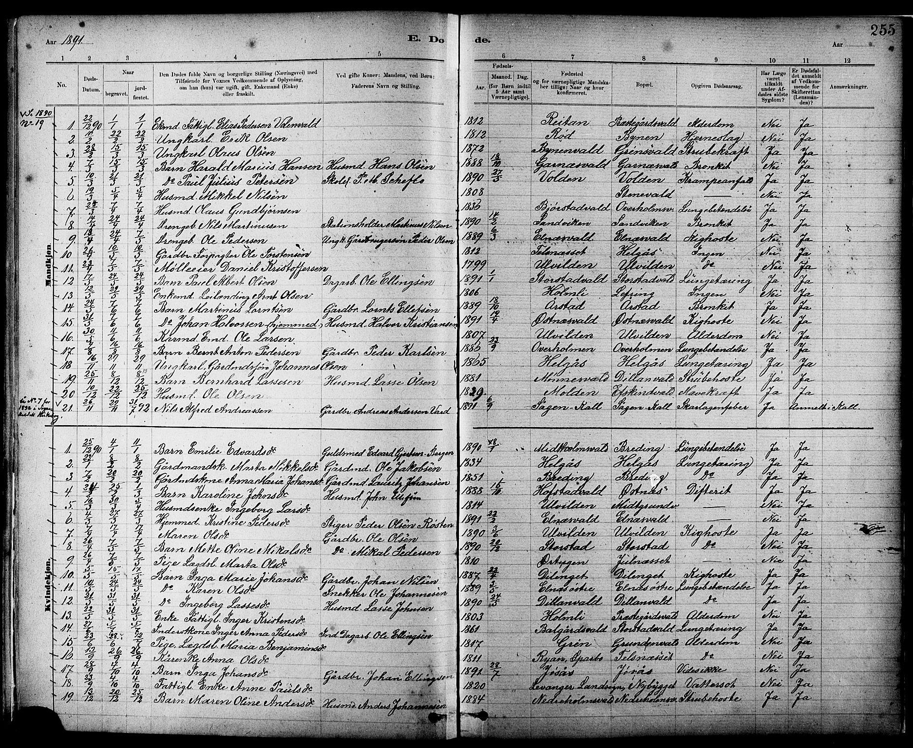 SAT, Ministerialprotokoller, klokkerbøker og fødselsregistre - Nord-Trøndelag, 724/L0267: Klokkerbok nr. 724C03, 1879-1898, s. 255