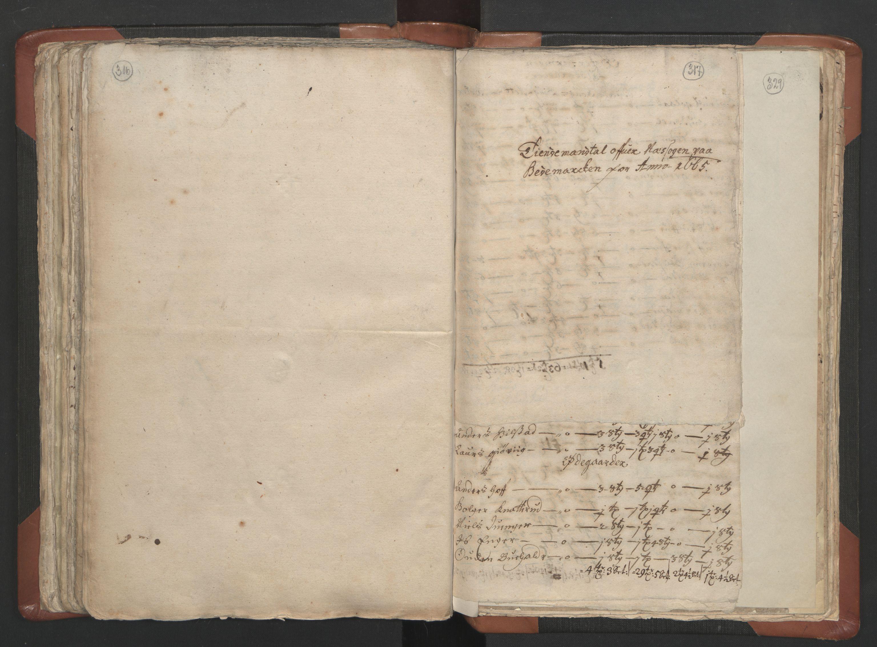 RA, Sogneprestenes manntall 1664-1666, nr. 5: Hedmark prosti, 1664-1666, s. 316-317