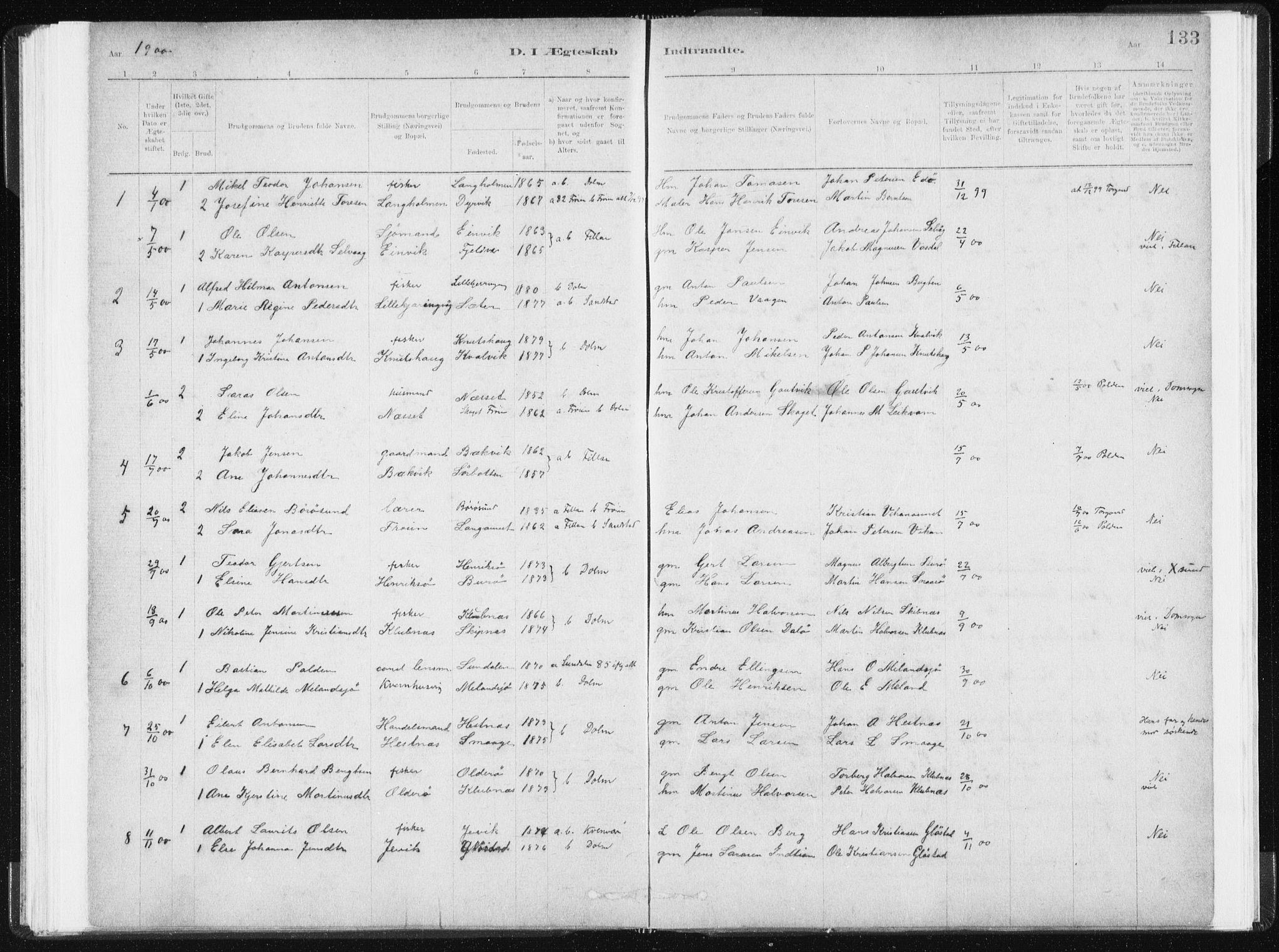 SAT, Ministerialprotokoller, klokkerbøker og fødselsregistre - Sør-Trøndelag, 634/L0533: Ministerialbok nr. 634A09, 1882-1901, s. 133