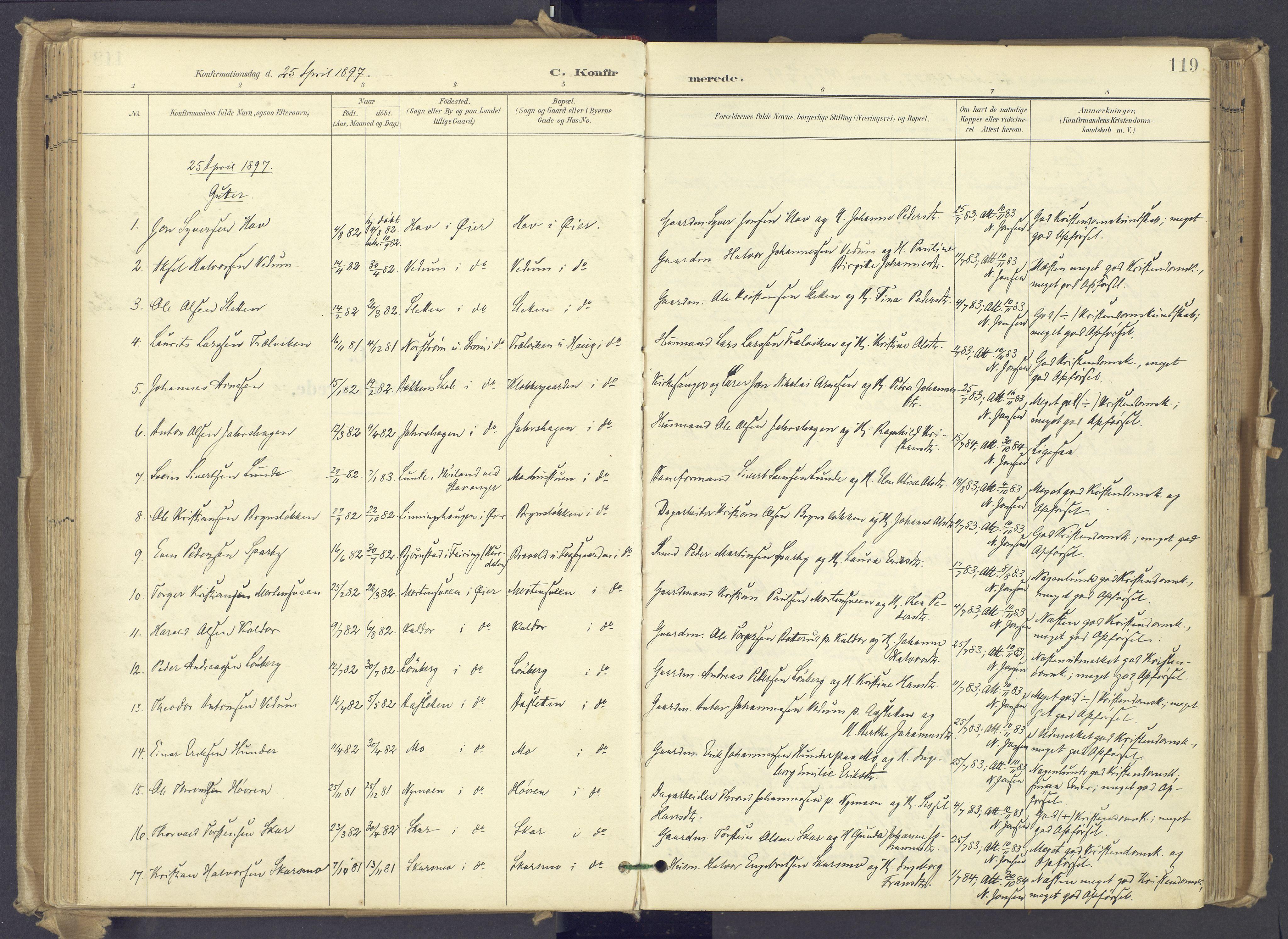 SAH, Øyer prestekontor, Ministerialbok nr. 12, 1897-1920, s. 119